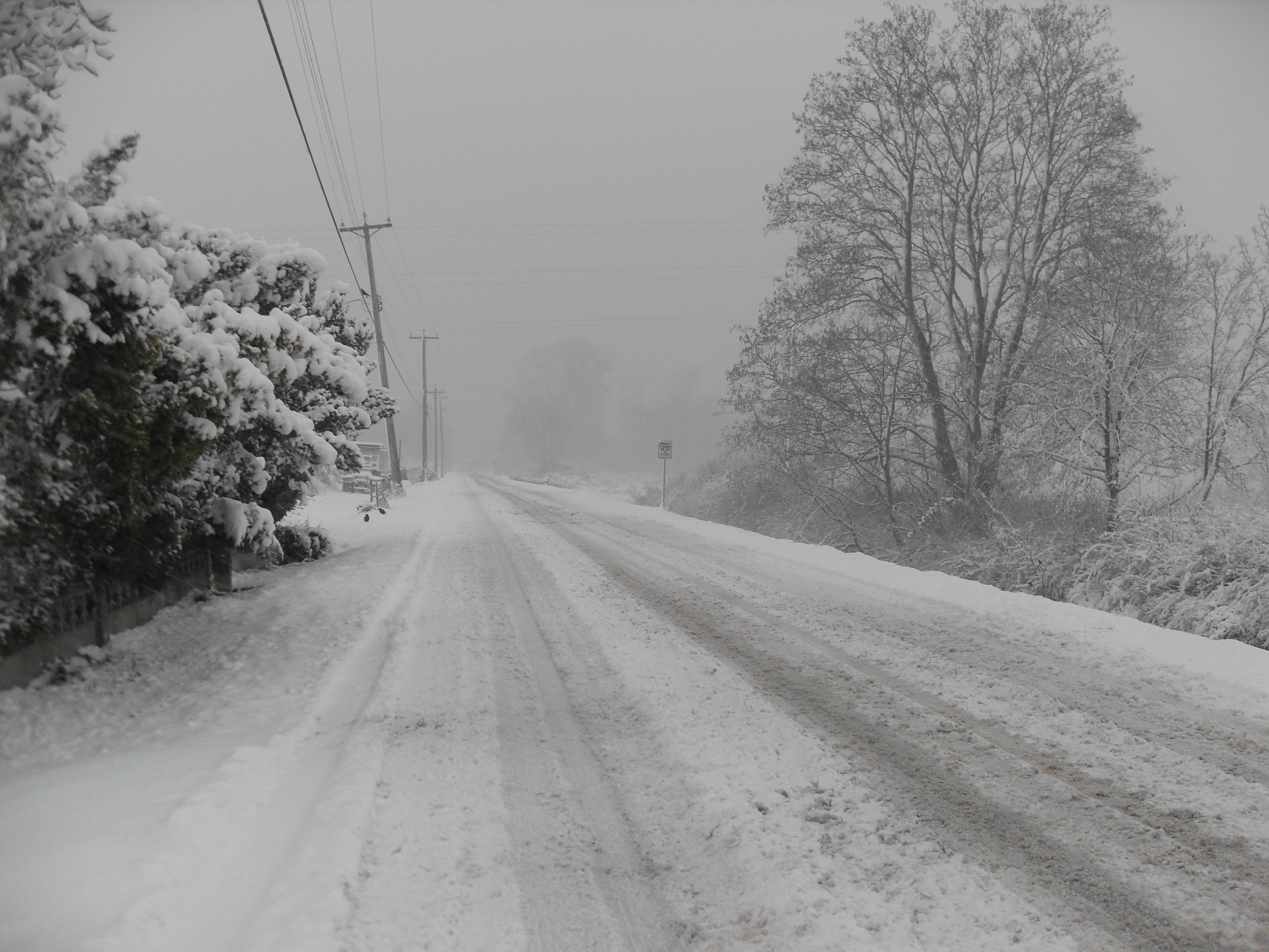 Gambar Pemandangan Musim Dingin Hitam Dan Putih Lalu Lintas