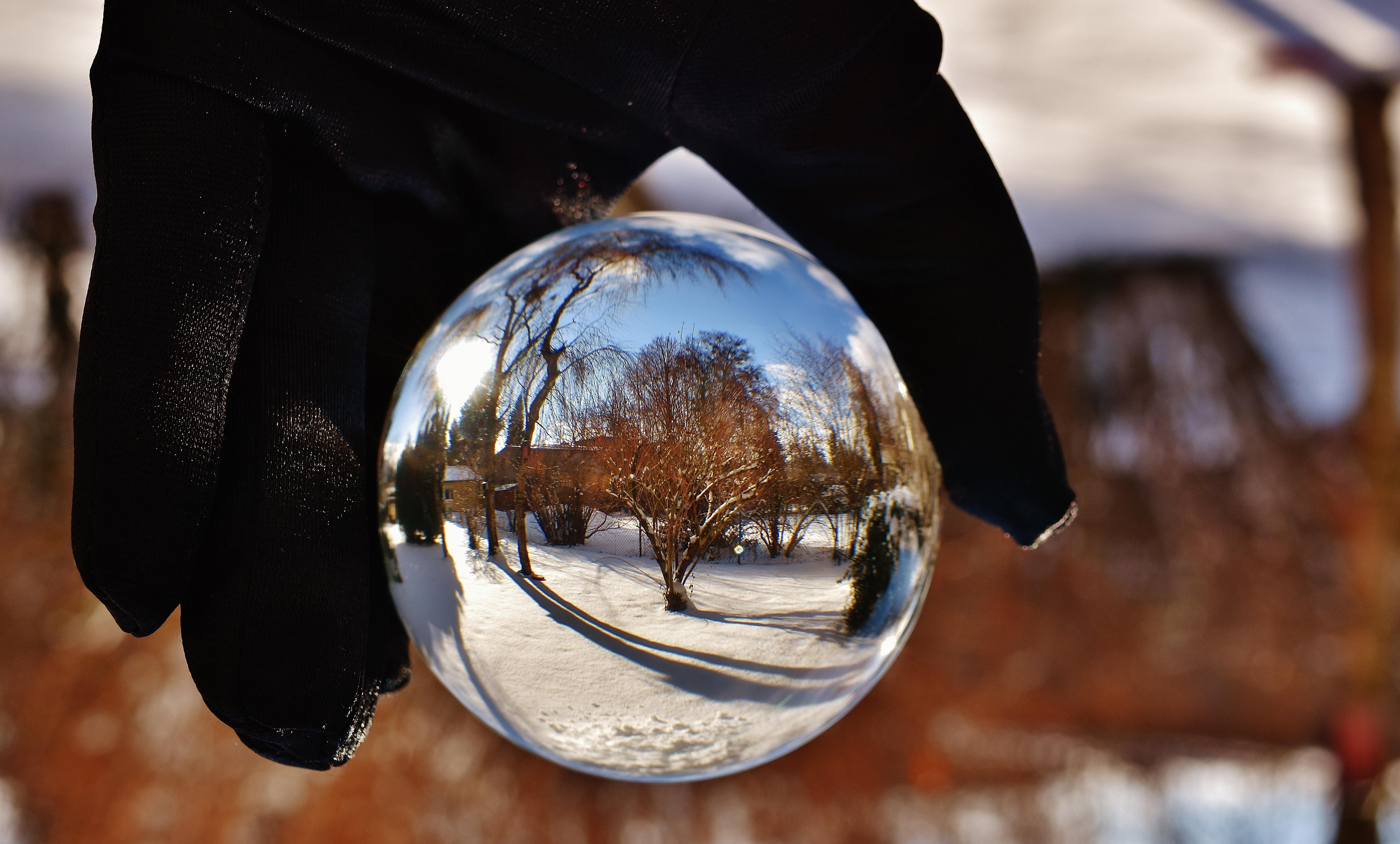 Images gratuites paysage neige hiver lumi re soleil - Arbre boule de neige ...