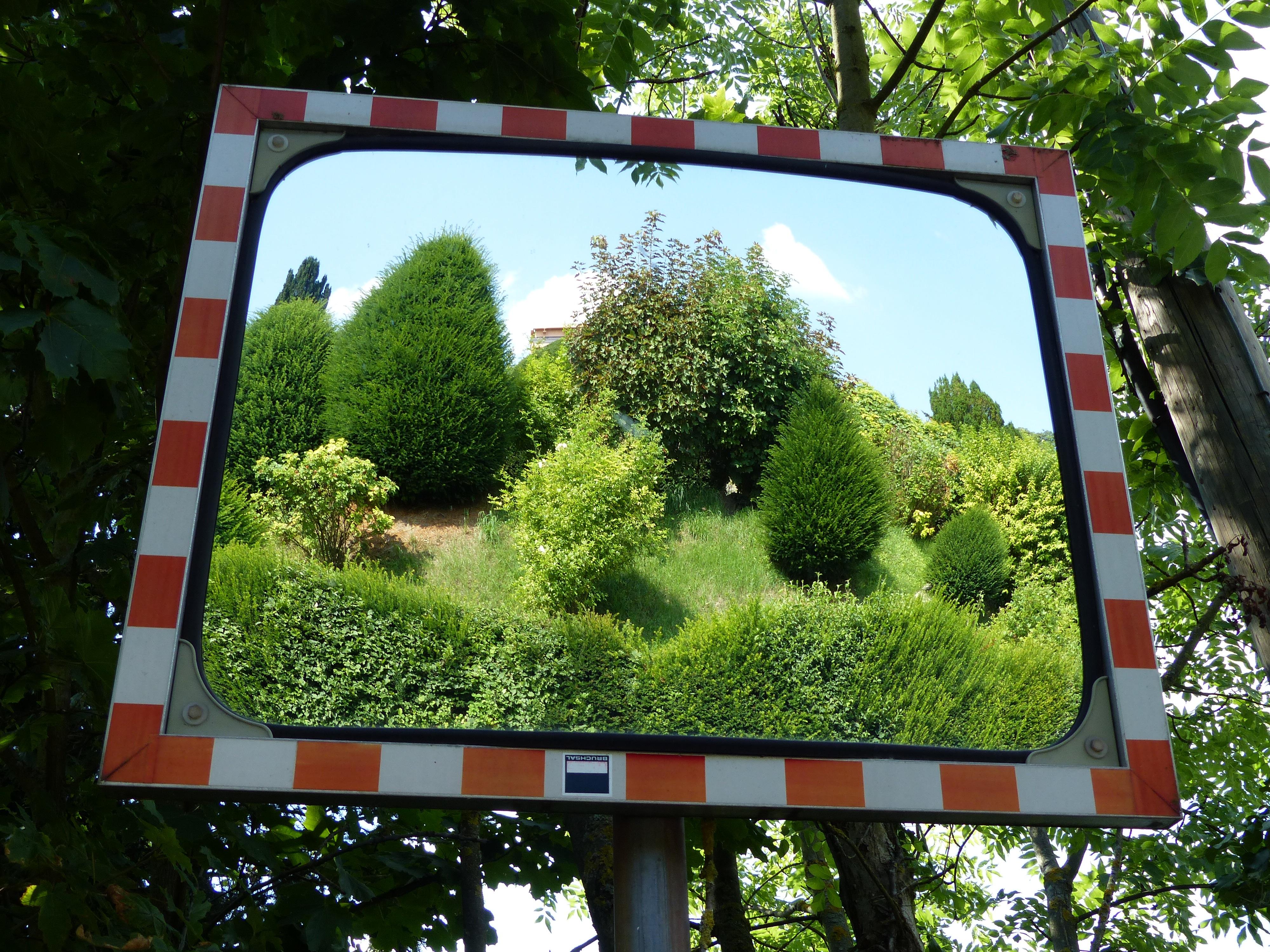 무료 이미지 : 경치, 창문, 광고하는, 녹색, 반사, 간판, 나무, 미술, 덤불, 사진 프레임, 미러링 ...