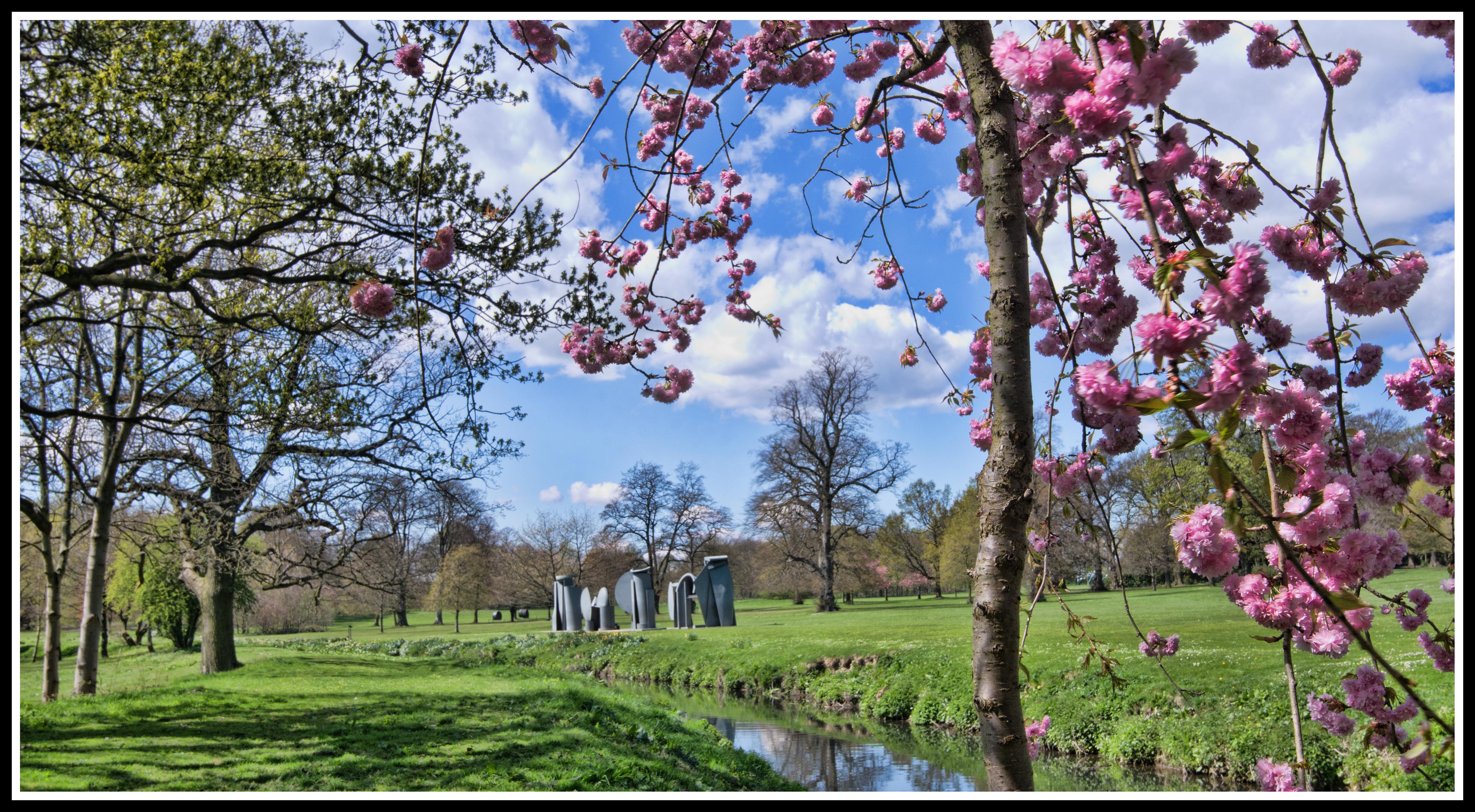 Moderne Stehlen kostenlose foto landschaft baum blühen pflanze himmel blume