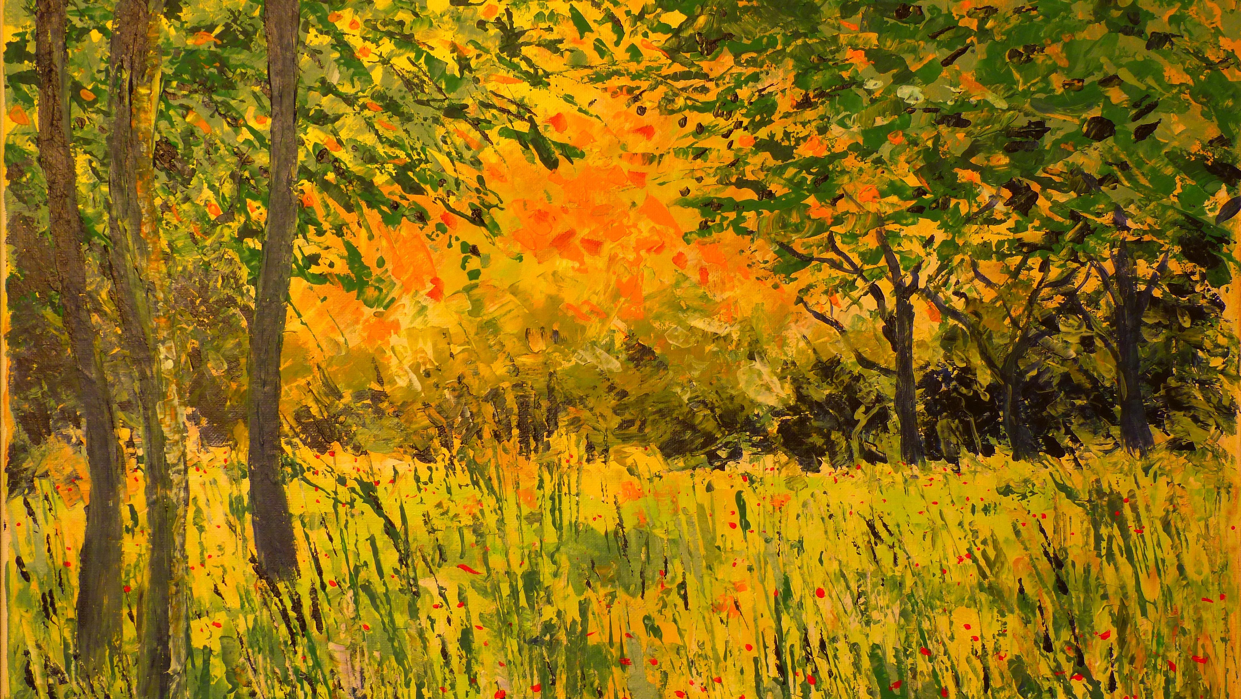 Fotoğraf Peyzaj Ağaç şube çayır Güneş ışığı Yaprak Sonbahar