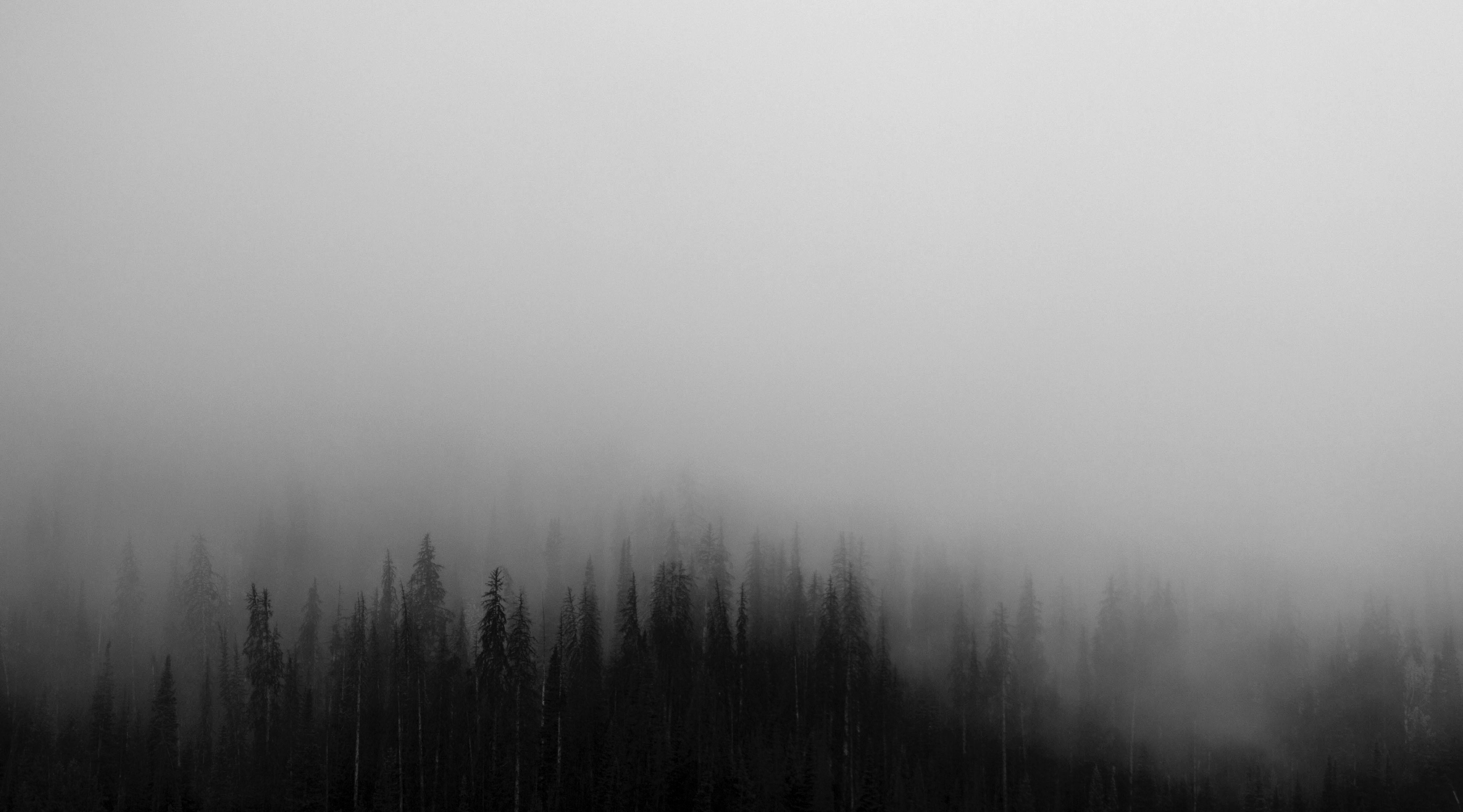 черный туман картинки тот момент, когда