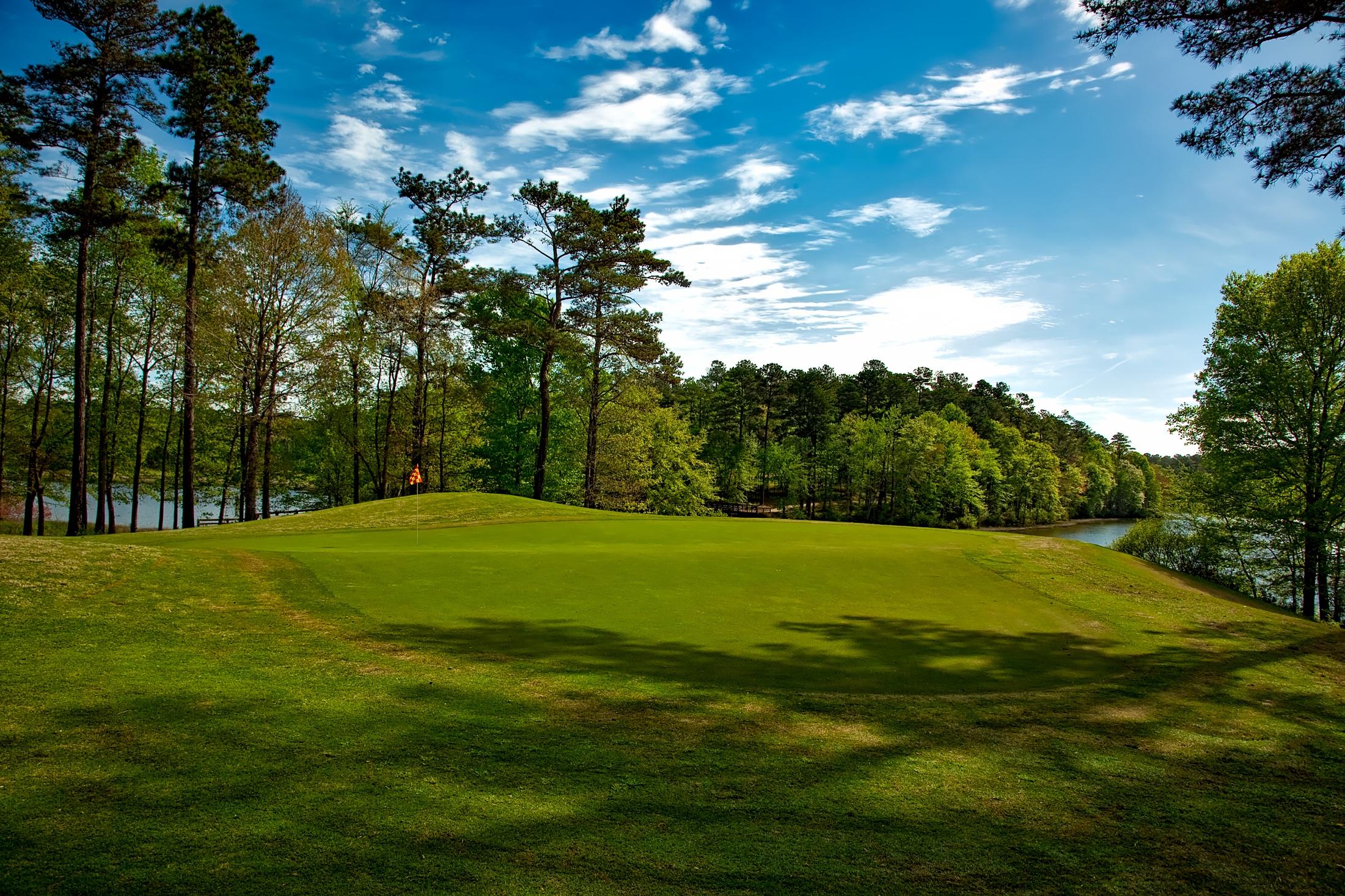 grass field. Shadow, Blue Sky, Golf Course, Club, Trees, Woods, Clouds, Sports, Grassland, Estate, Woodland, Grass Land, Field, Outdoor Recreation, Field 4