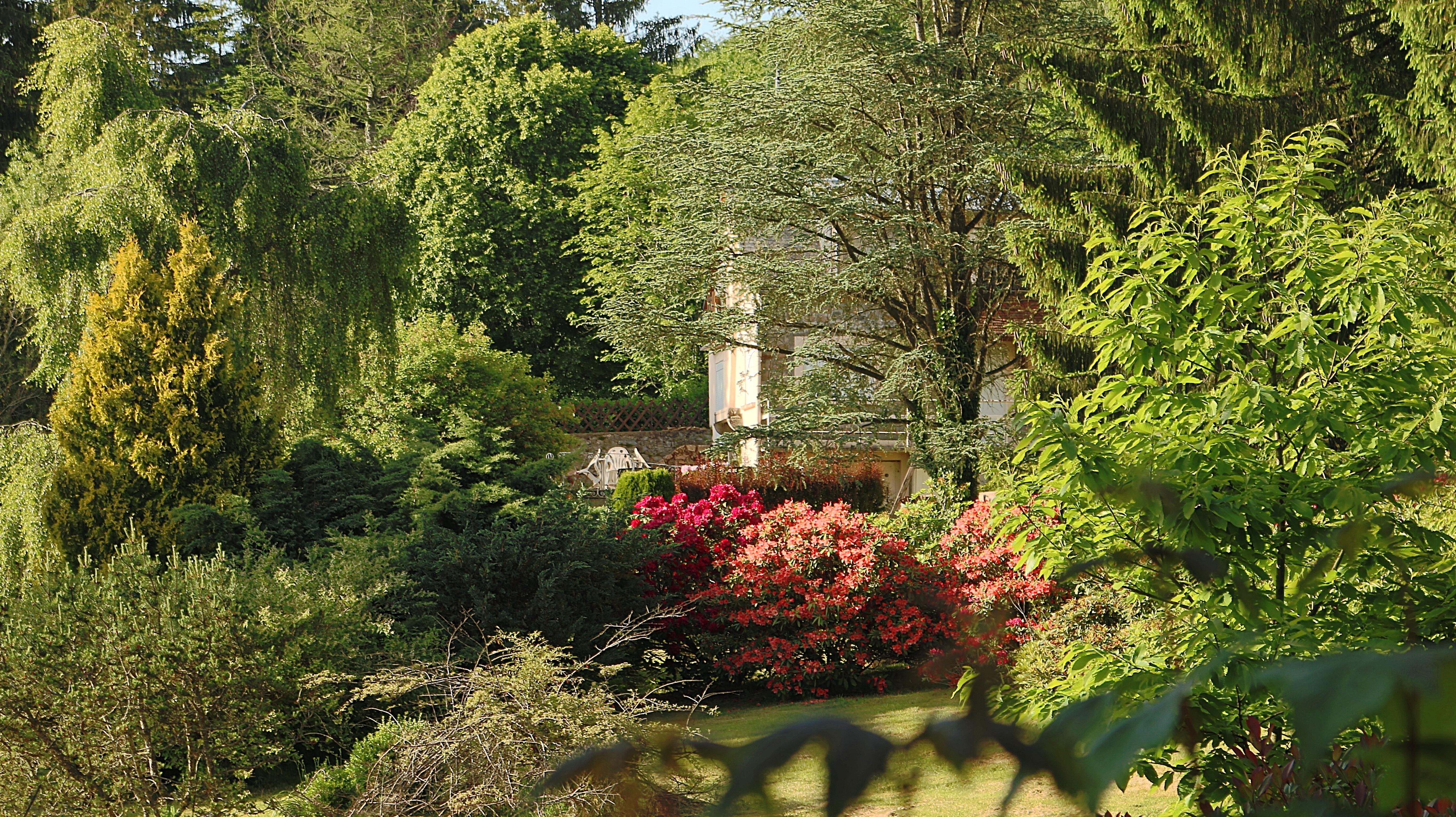landschaft baum wald pflanze rasen haus blatt blume frankreich herbst hinterhof botanik garten flora bume vegetation - Hinterhof Landschaften Bilder