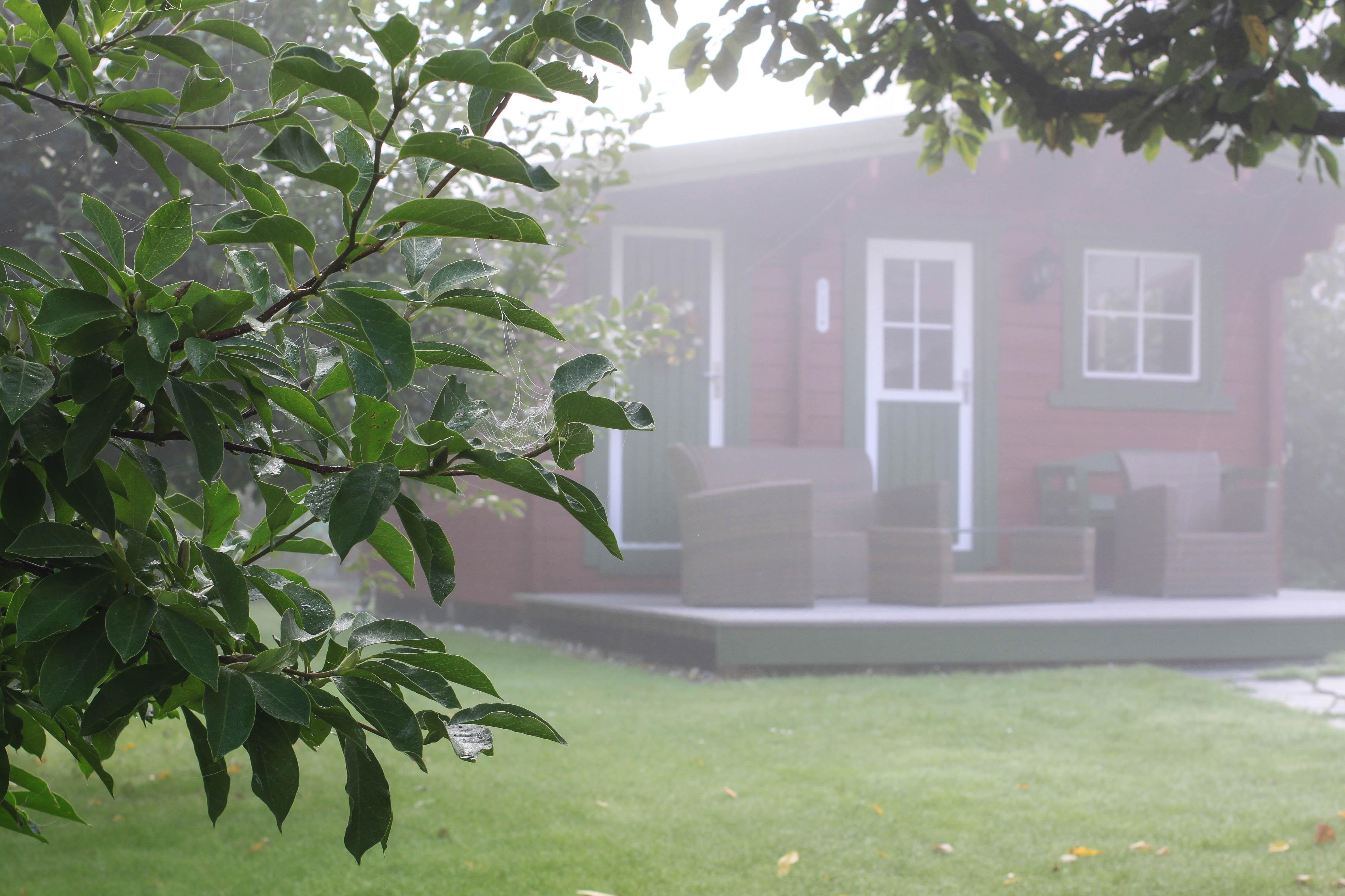 landschaft baum gras tau die architektur pflanze nebel haus fenster zuhause htte herbst hinterhof fassade eigentum - Hinterhof Landschaften Bilder