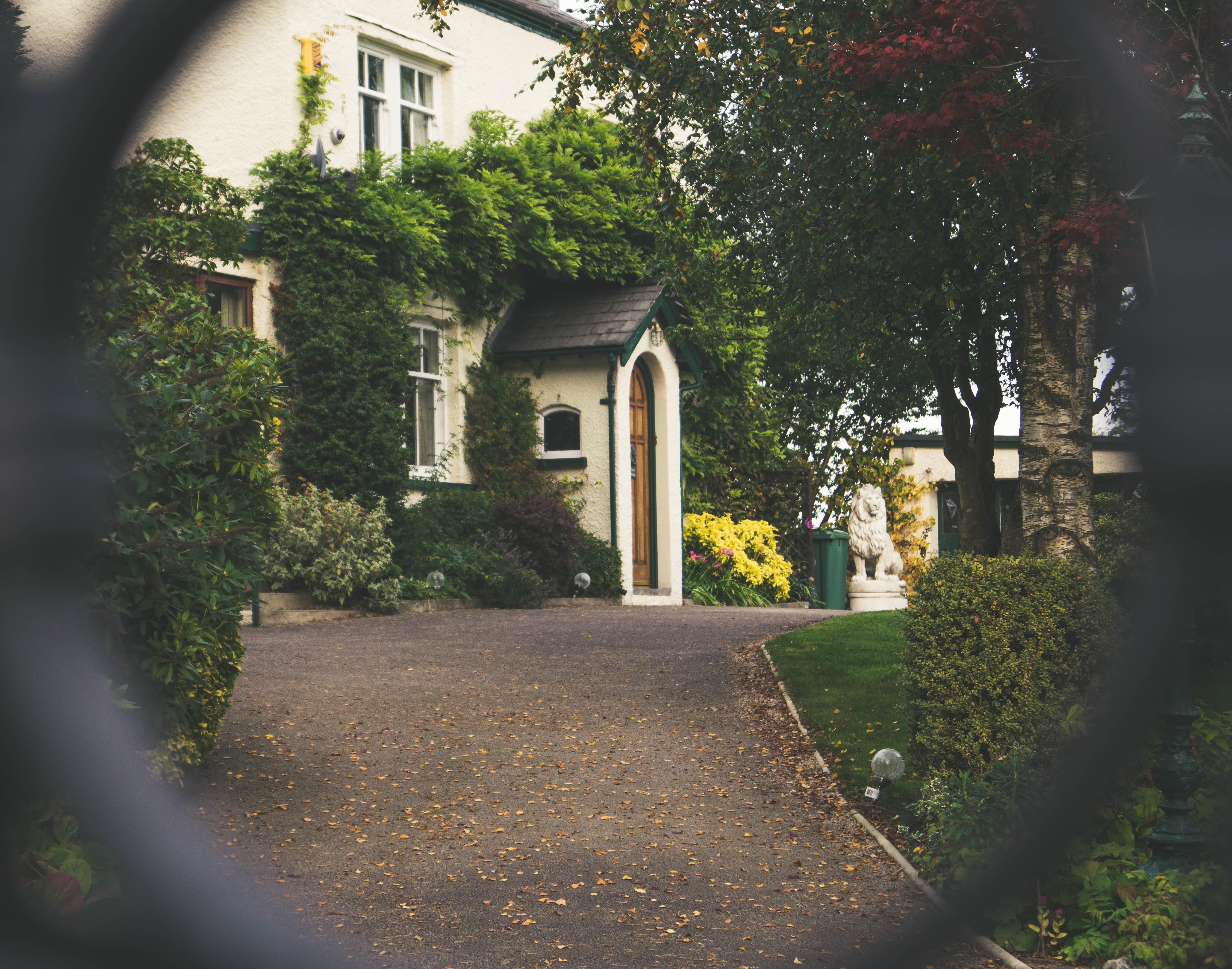 Kostenlose foto : Landschaft, Baum, Gras, Zaun, Straße, Weiß, Rasen ...