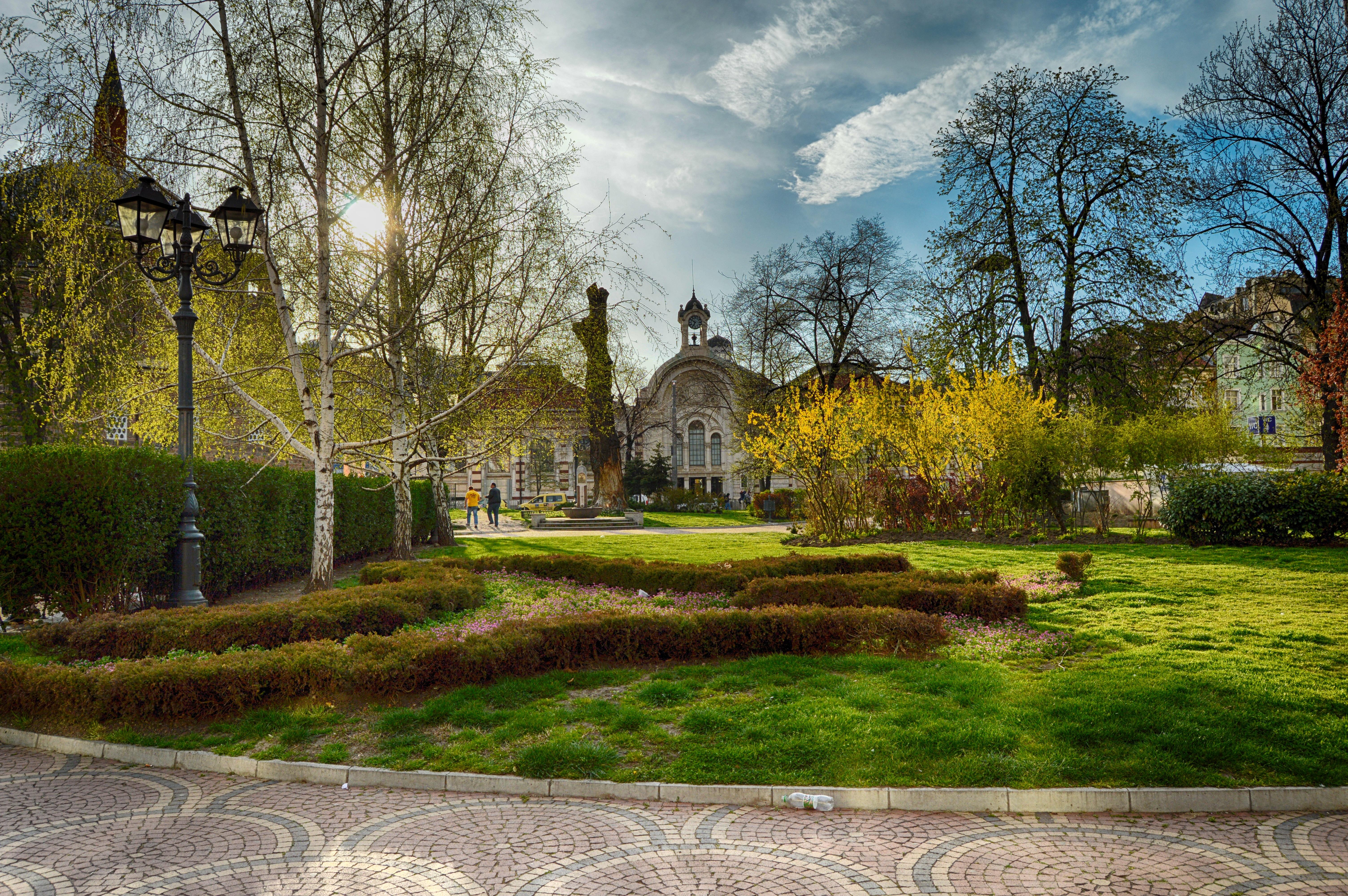 Landschaft Baum Gras Rasen Villa Chateau Herbst Park Hinterhof Garten  Immobilien Garten Bulgarien Sofia Ländliches Gebiet