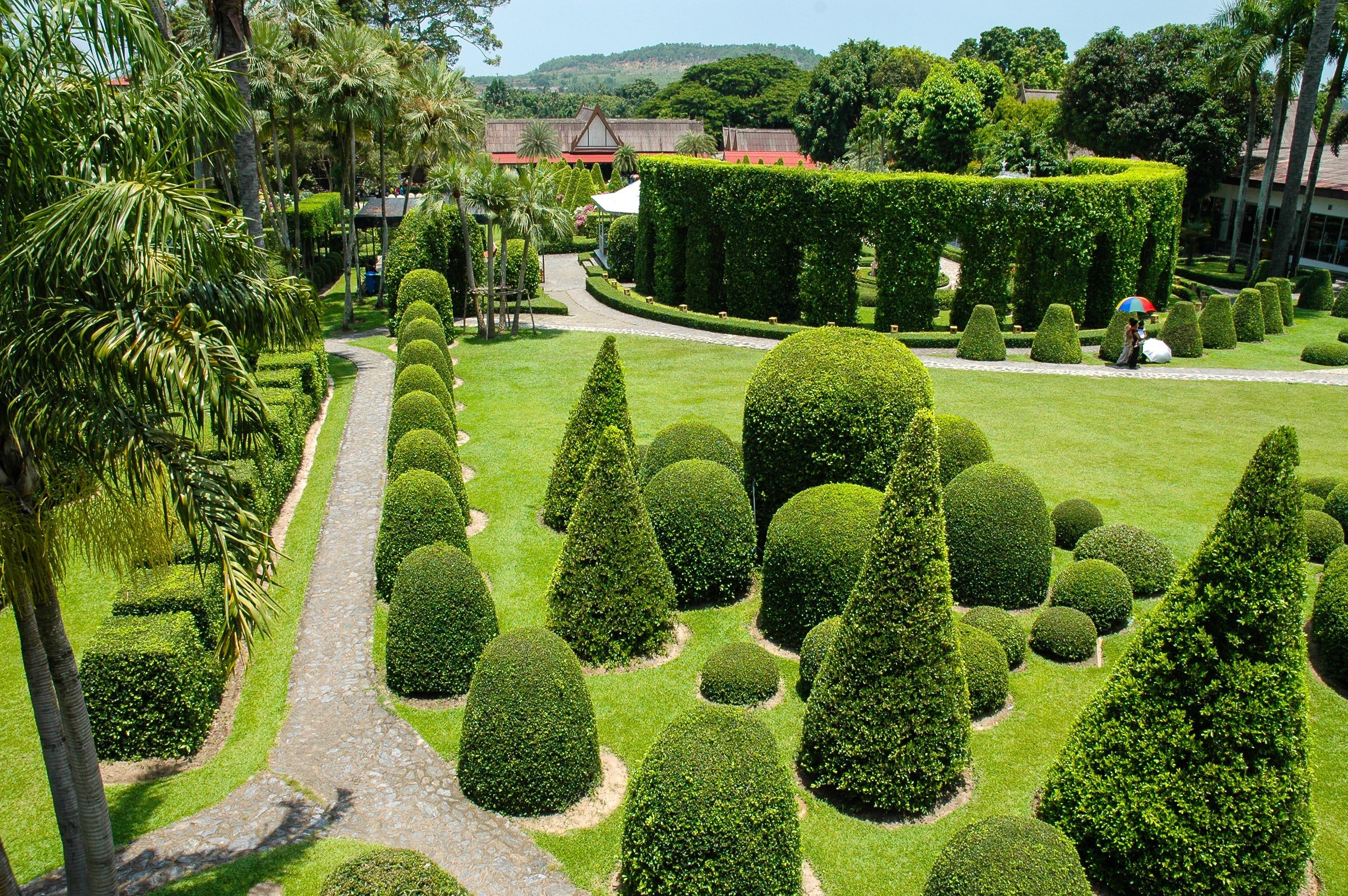 Images gratuites paysage arbre herbe pelouse feuille for Plantation jardin
