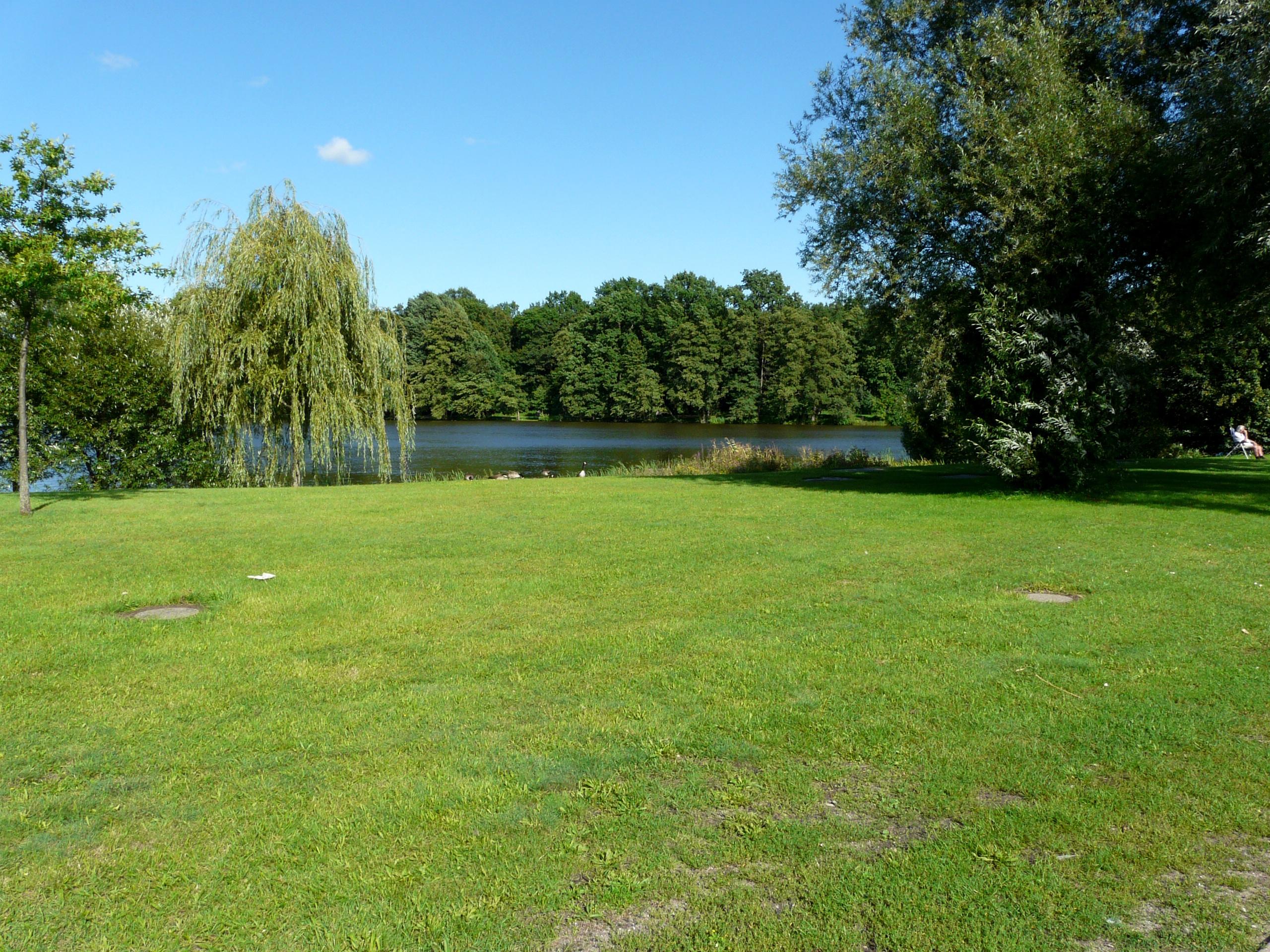 landschaft baum gras struktur rasen wiese see teich weide park hinterhof garten golfplatz bume wiese immobilien - Hinterhof Landschaften Bilder