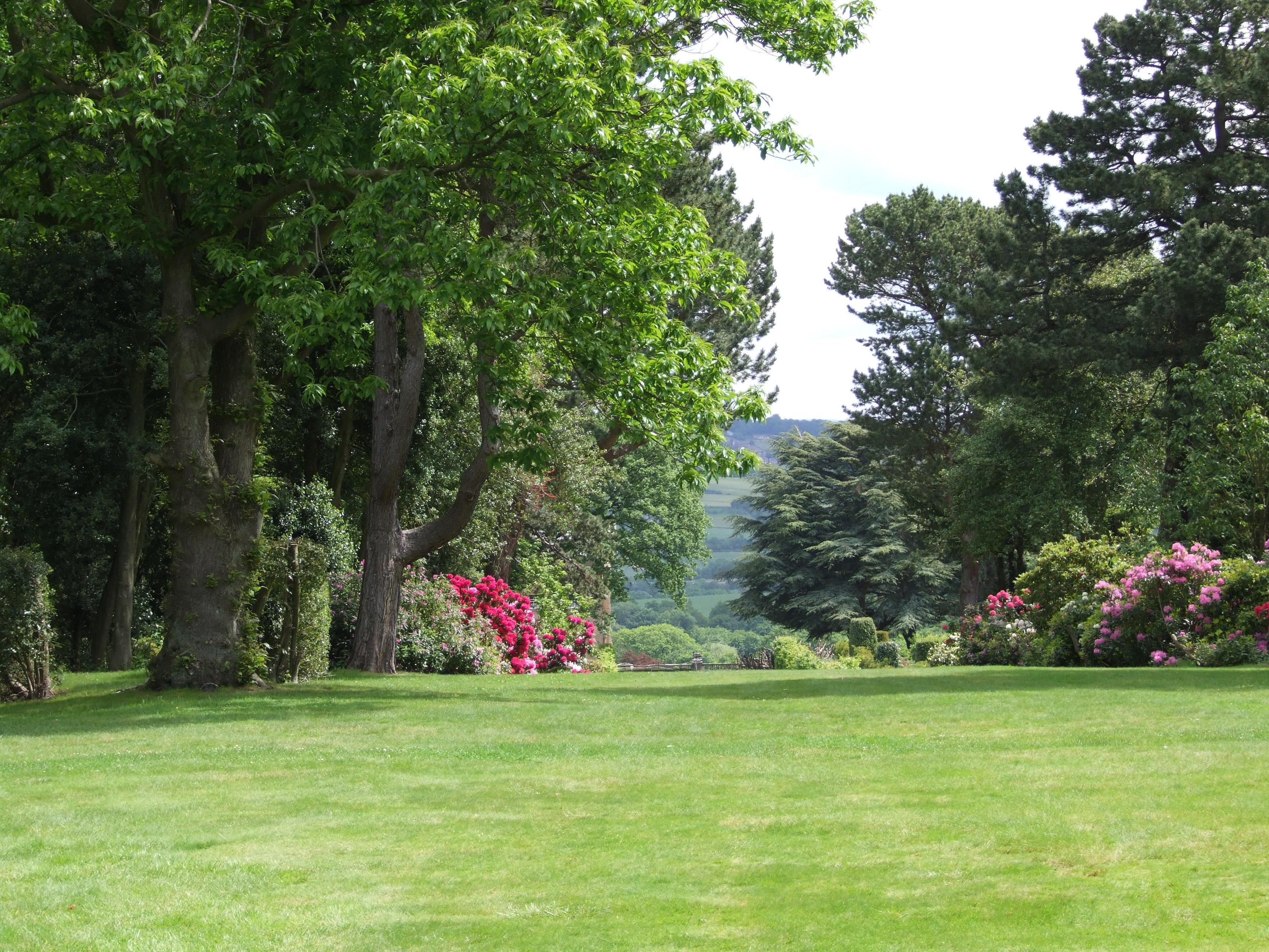Fotos gratis paisaje rbol c sped estructura planta for Arboles para plantar en verano