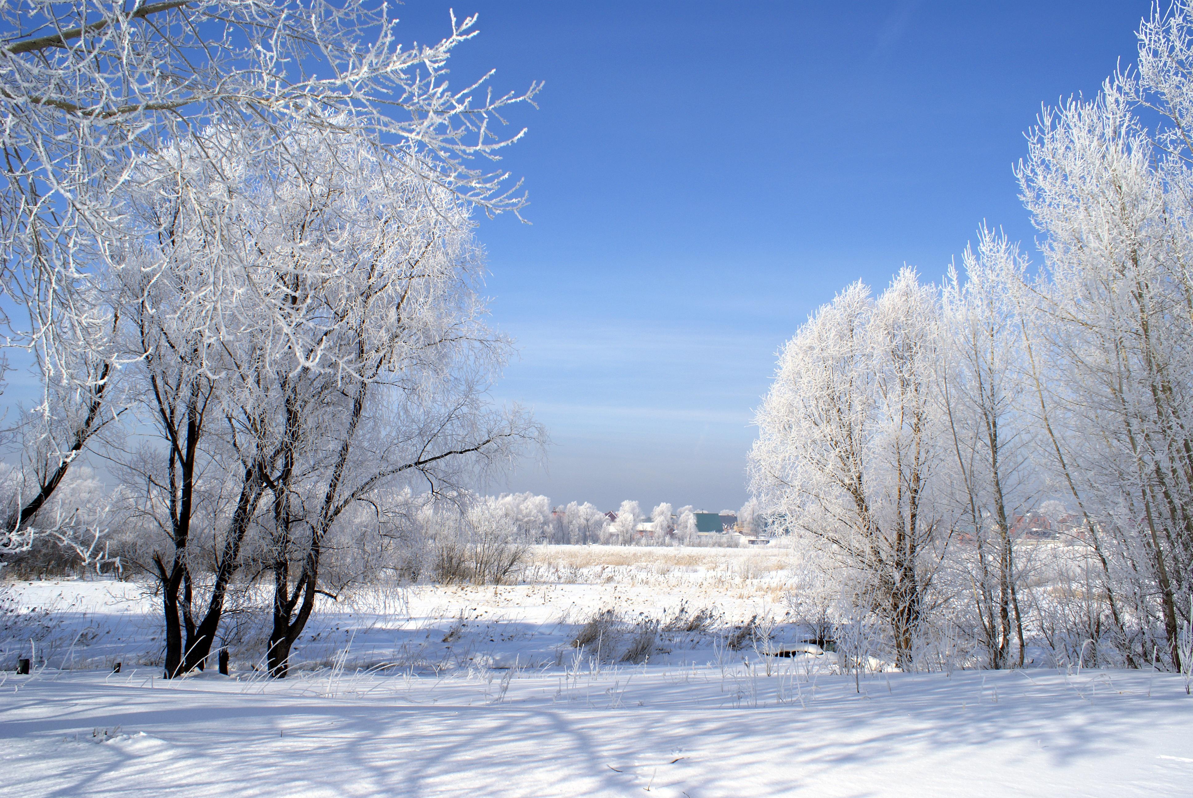 Siberia Cold Weather