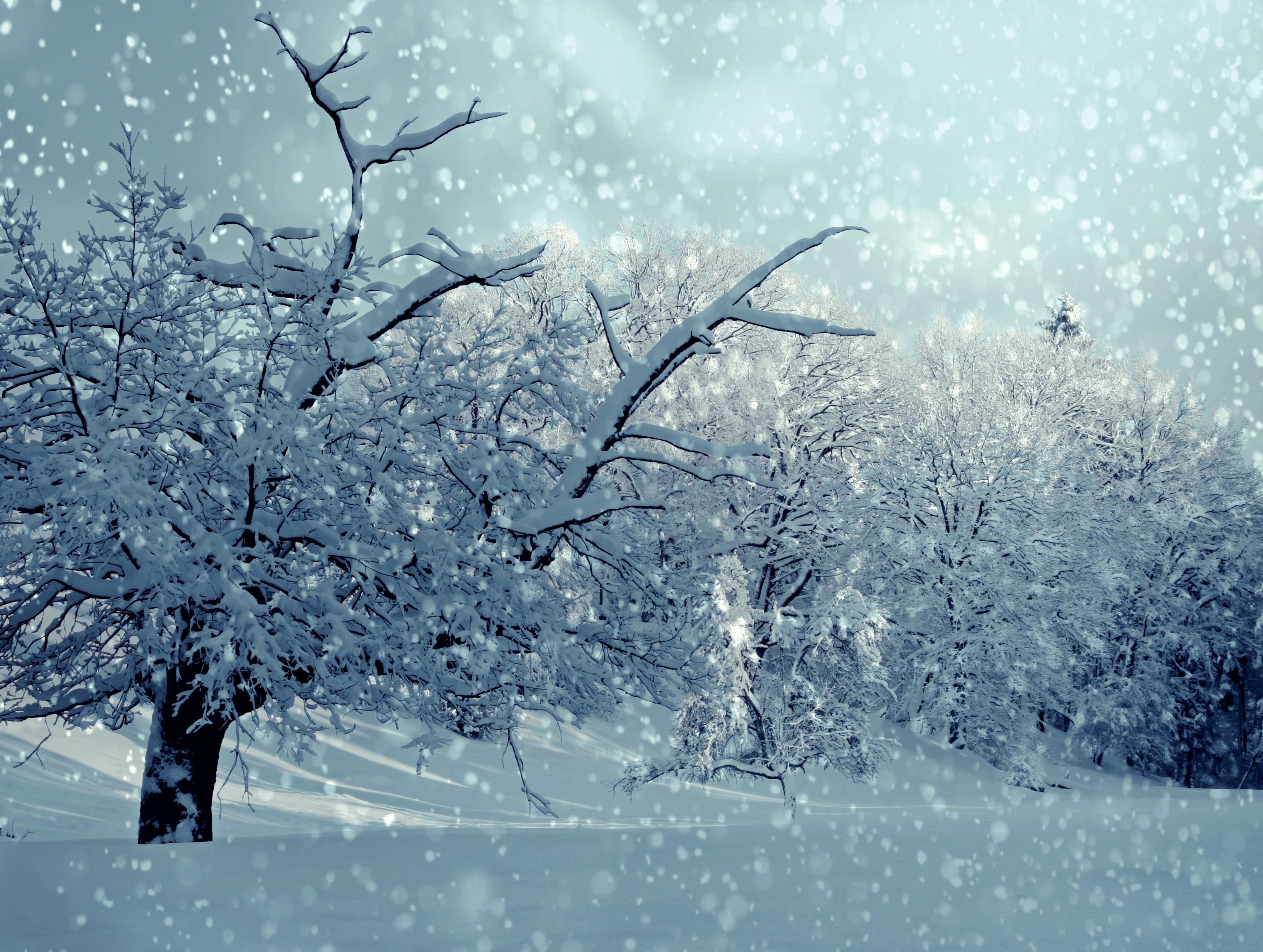 таком снежная погода картинка чудесный