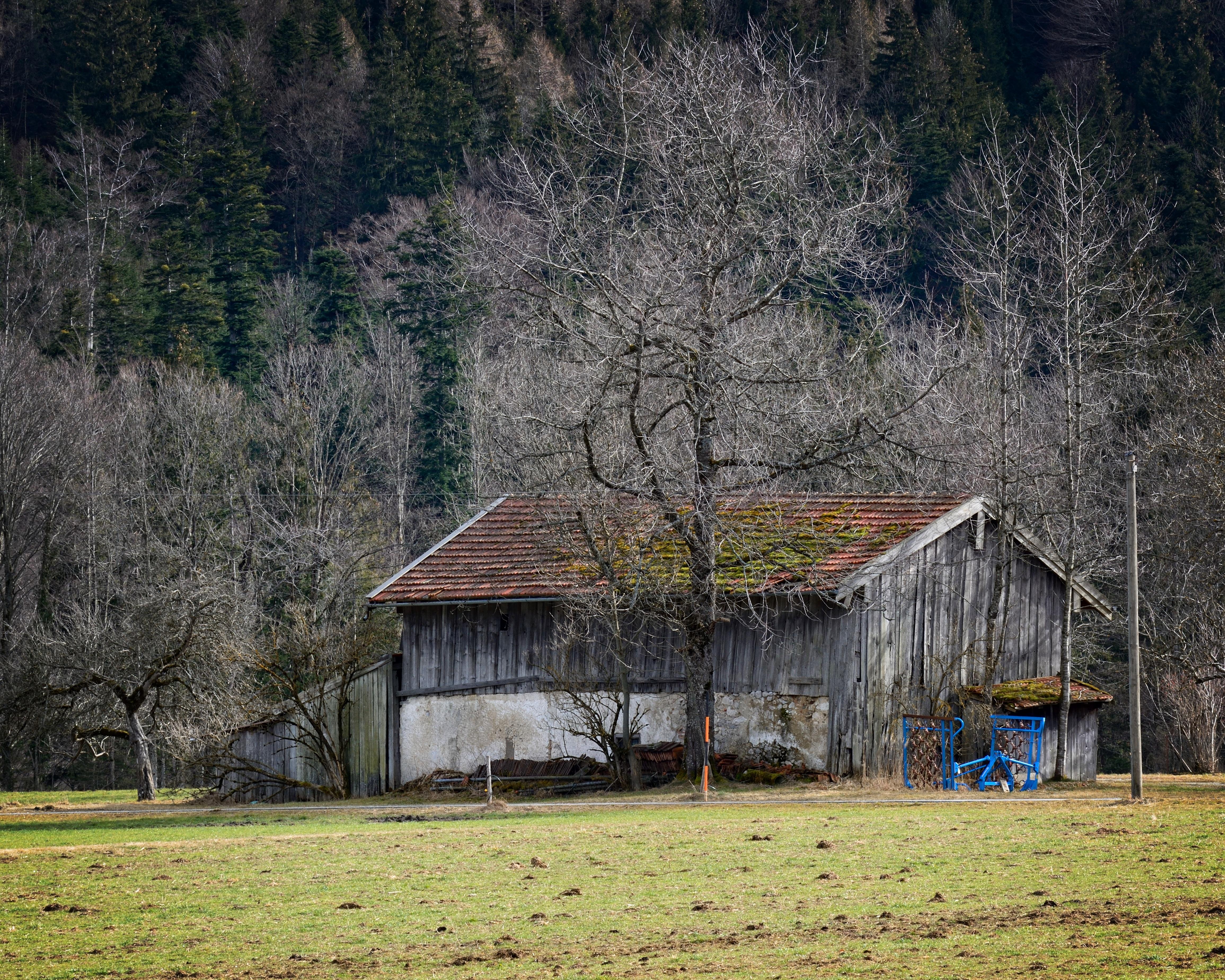 Kostenlose foto : Landschaft, Baum, Natur, Bauernhof, Wiese, Haus ...