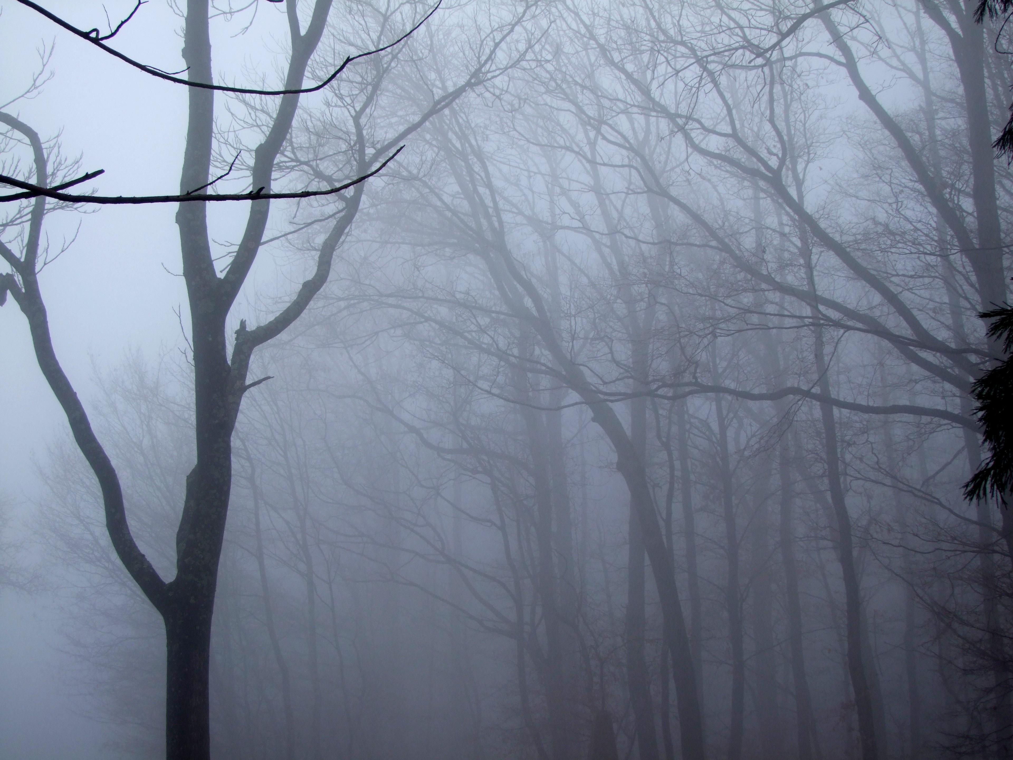 черный туман картинки произведение окутано