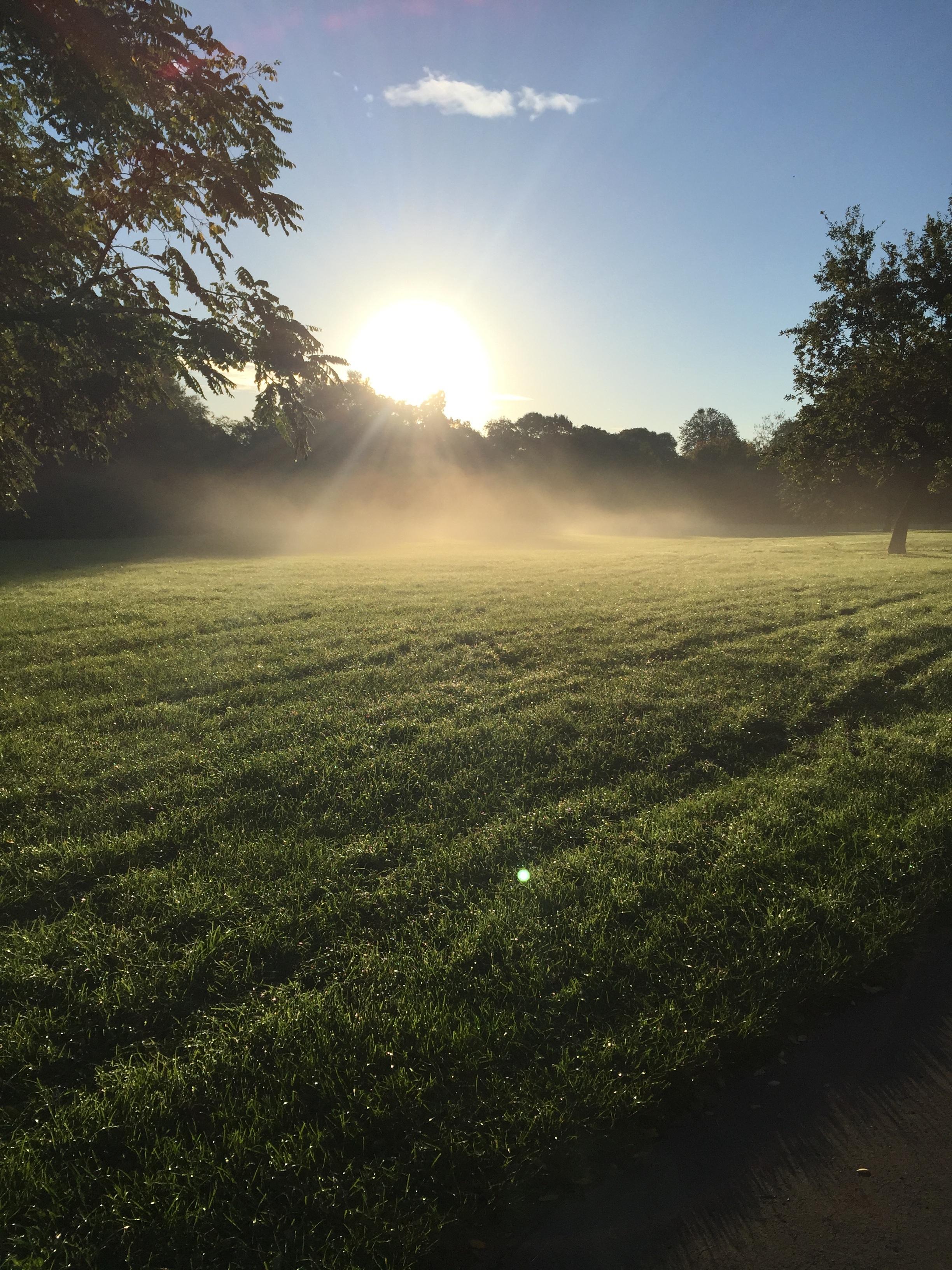 кладем фото рассвета на лужайке нашим