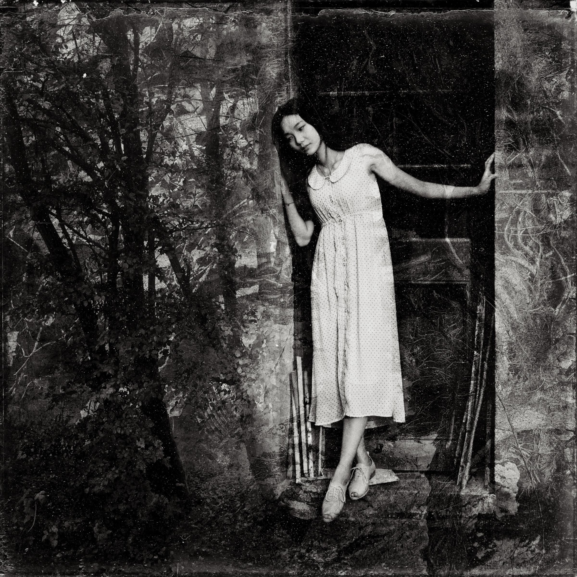 Landscape tree nature forest light black and white girl woman fog dark foliage sadness monochrome door