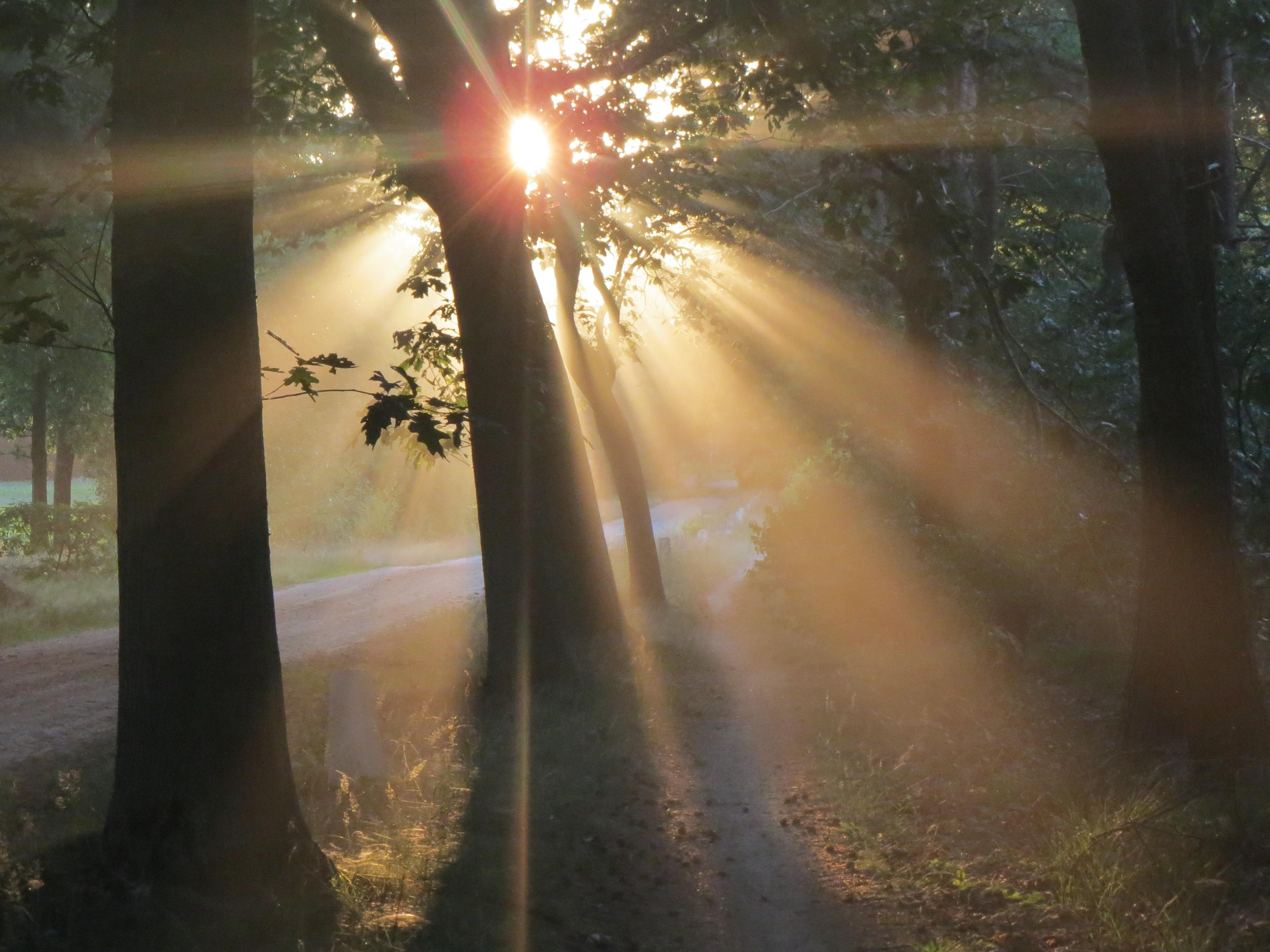 фото на заходящем солнце понять, как пользоваться