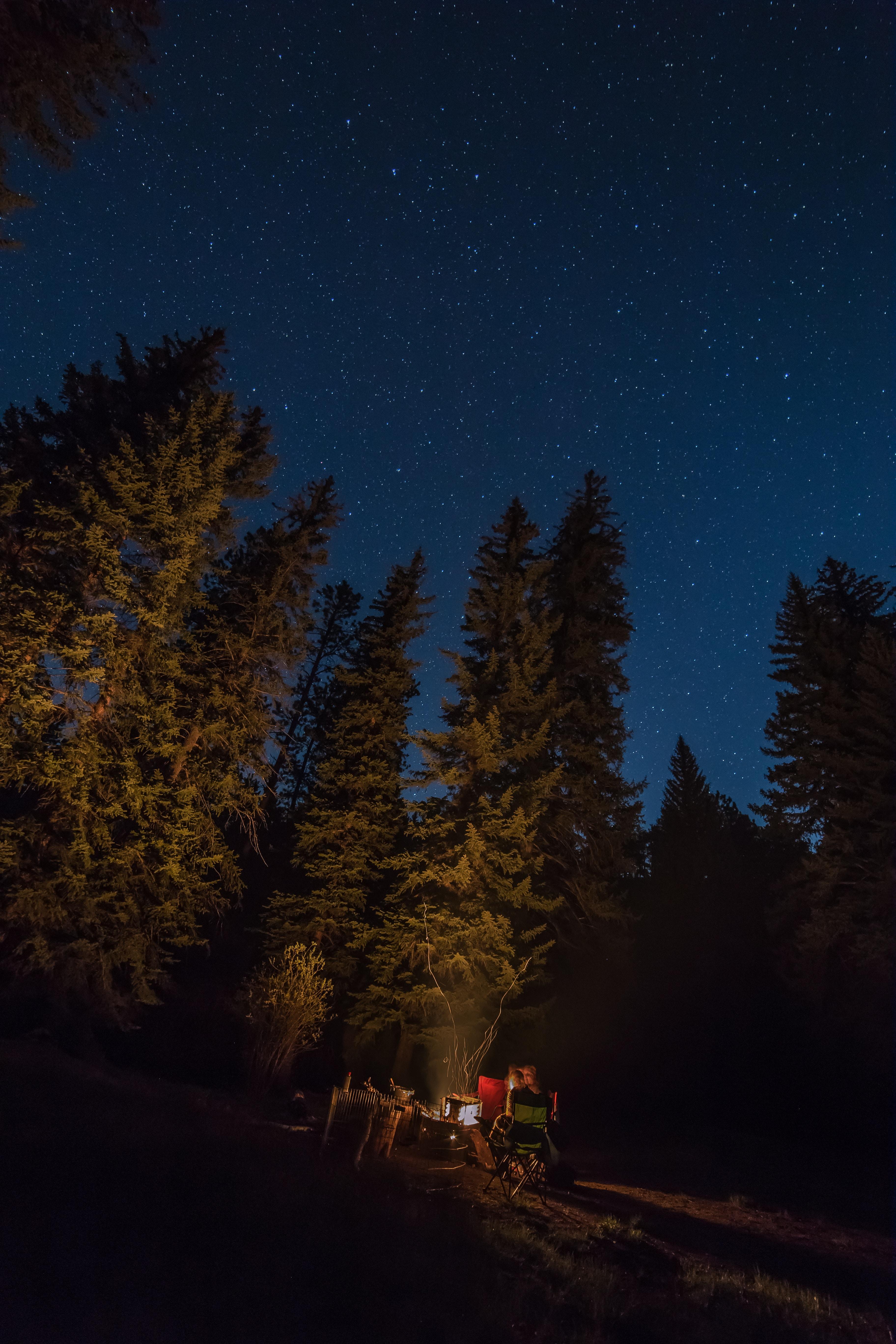 Gambar Pemandangan Alam Hutan Gunung Musim Dingin