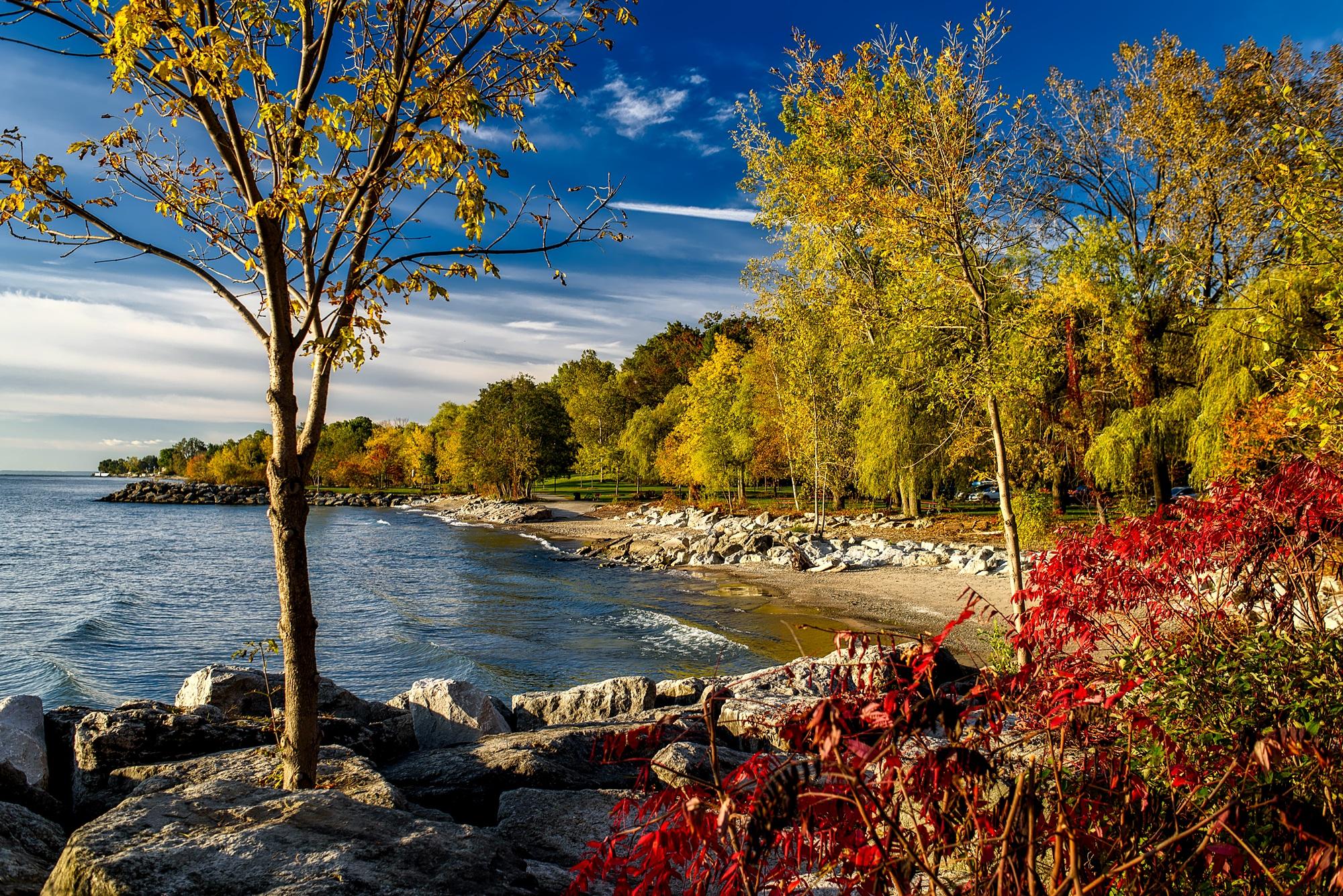 Free Images : landscape, tree, nature, forest, sky, leaf ...