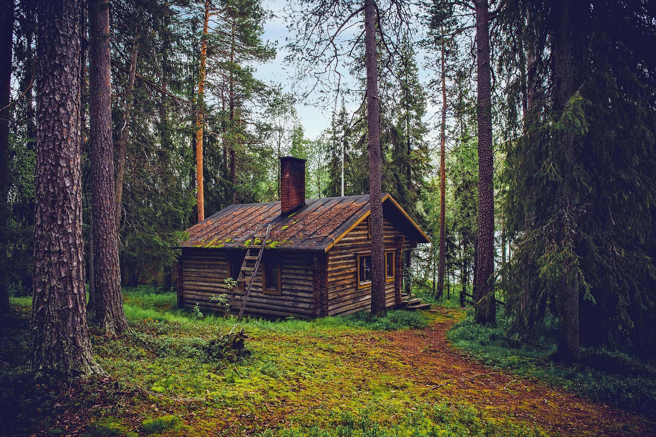 Images gratuites paysage arbre la nature for t for Agrandissement maison zone rurale