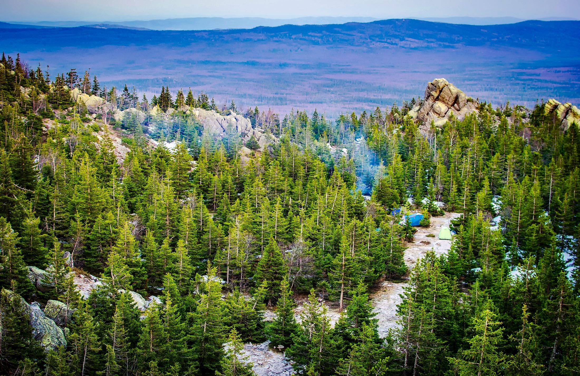 Free Images : landscape, tree, nature, wilderness, walking ...