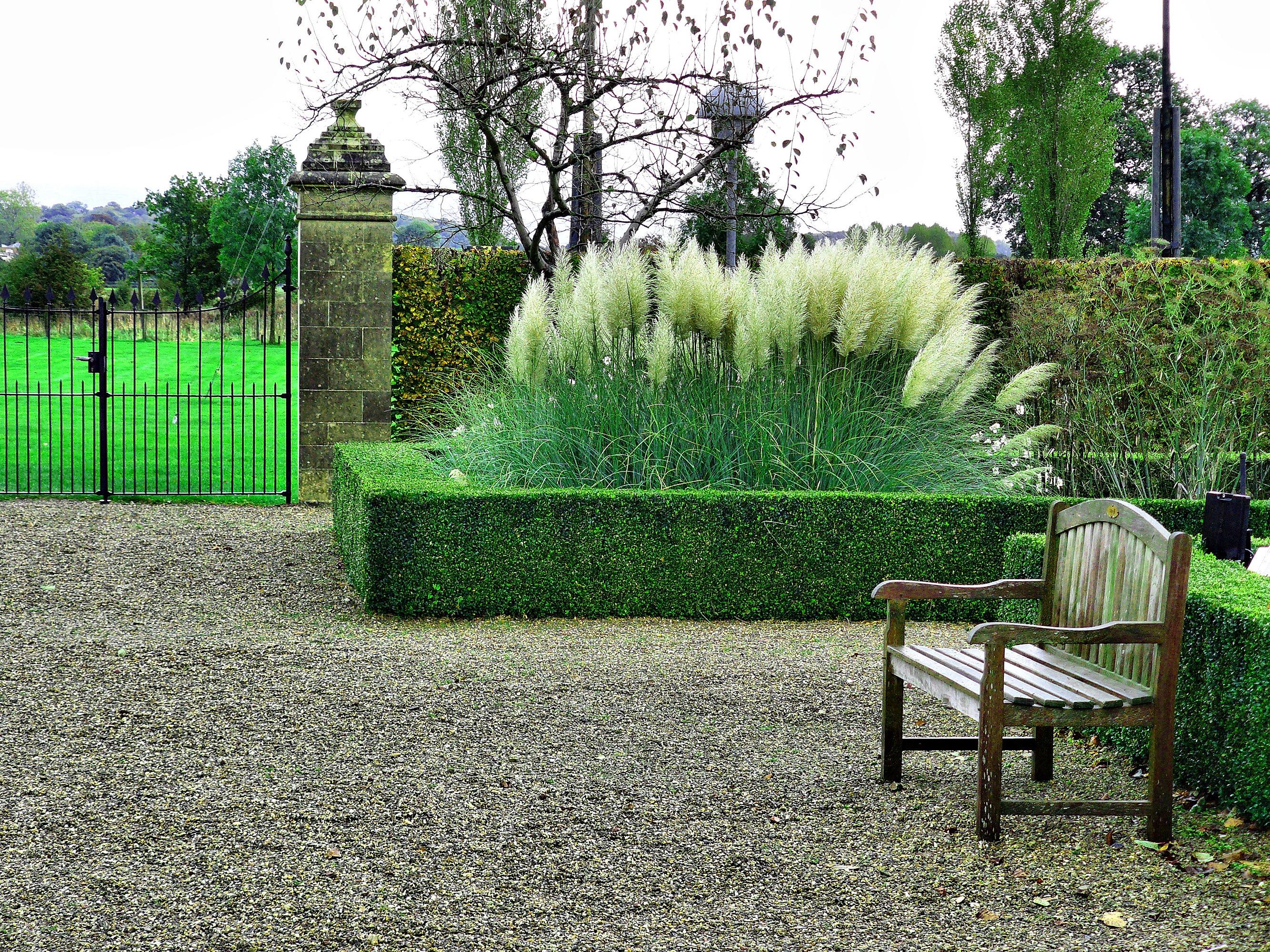 Kostenlose foto Landschaft Baum Natur Gras Zaun Bank Rasen