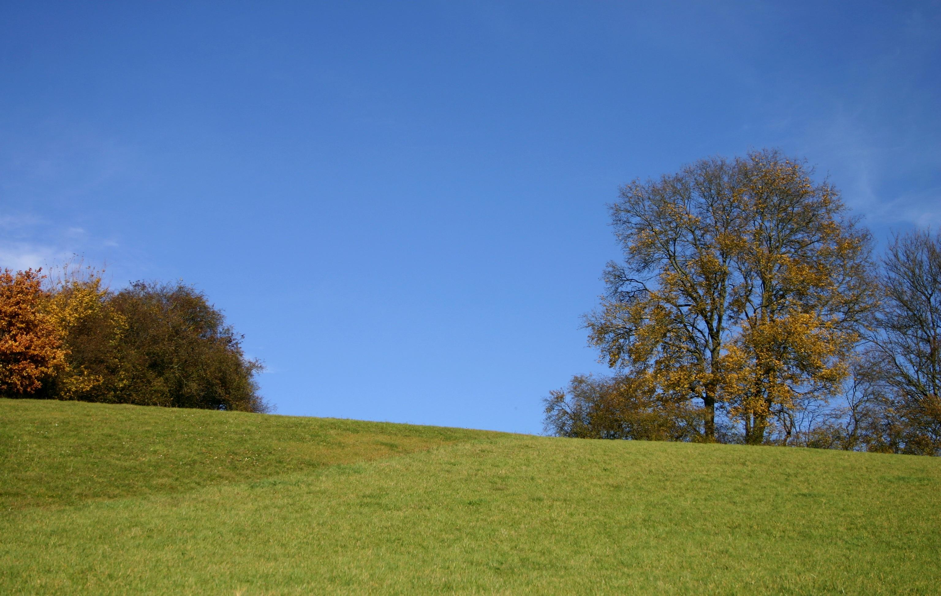 Free Images : landscape, tree, nature, horizon, cloud, sky ...