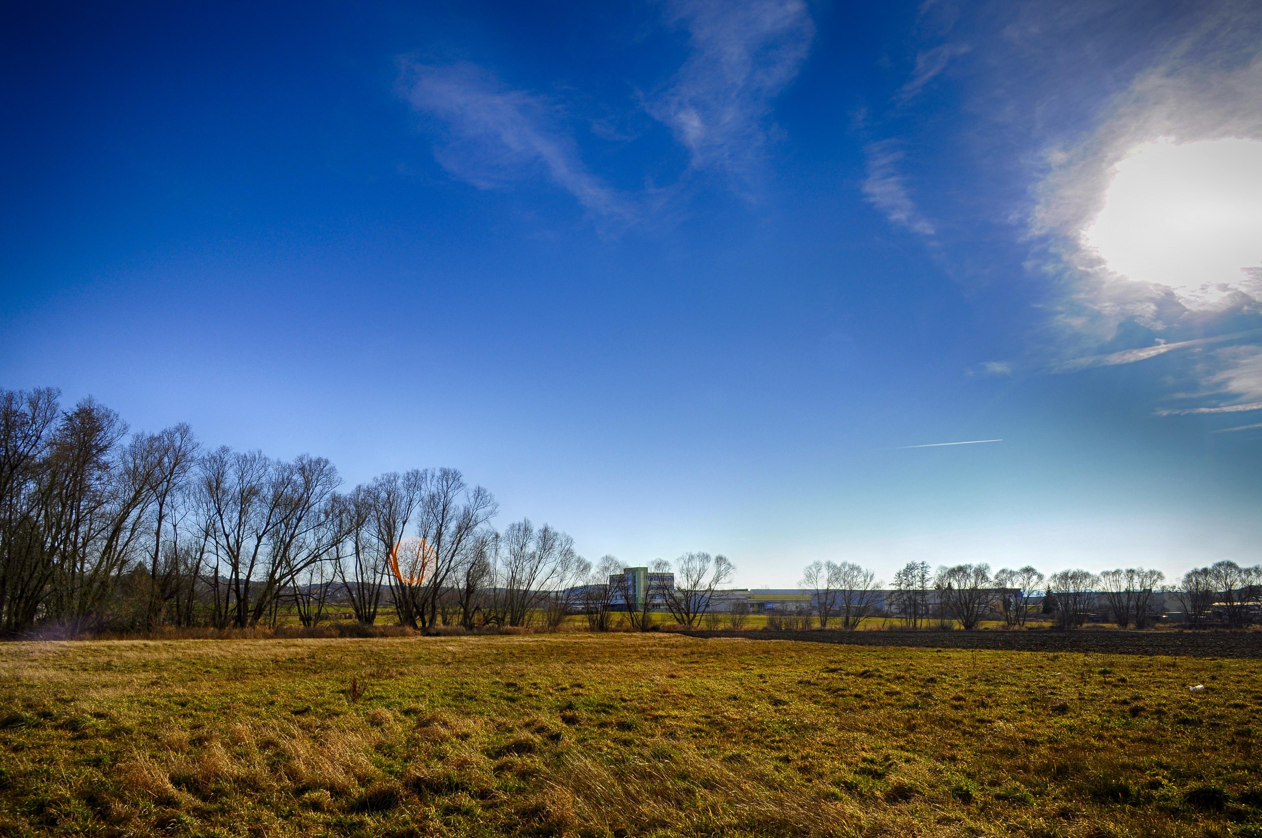 b7647c9b0509e Free Images : landscape, tree, nature, grass, horizon, cloud, sky, sun,  sunset, field, meadow, prairie, sunlight, morning, hill, dawn, dusk,  evening, spring ...