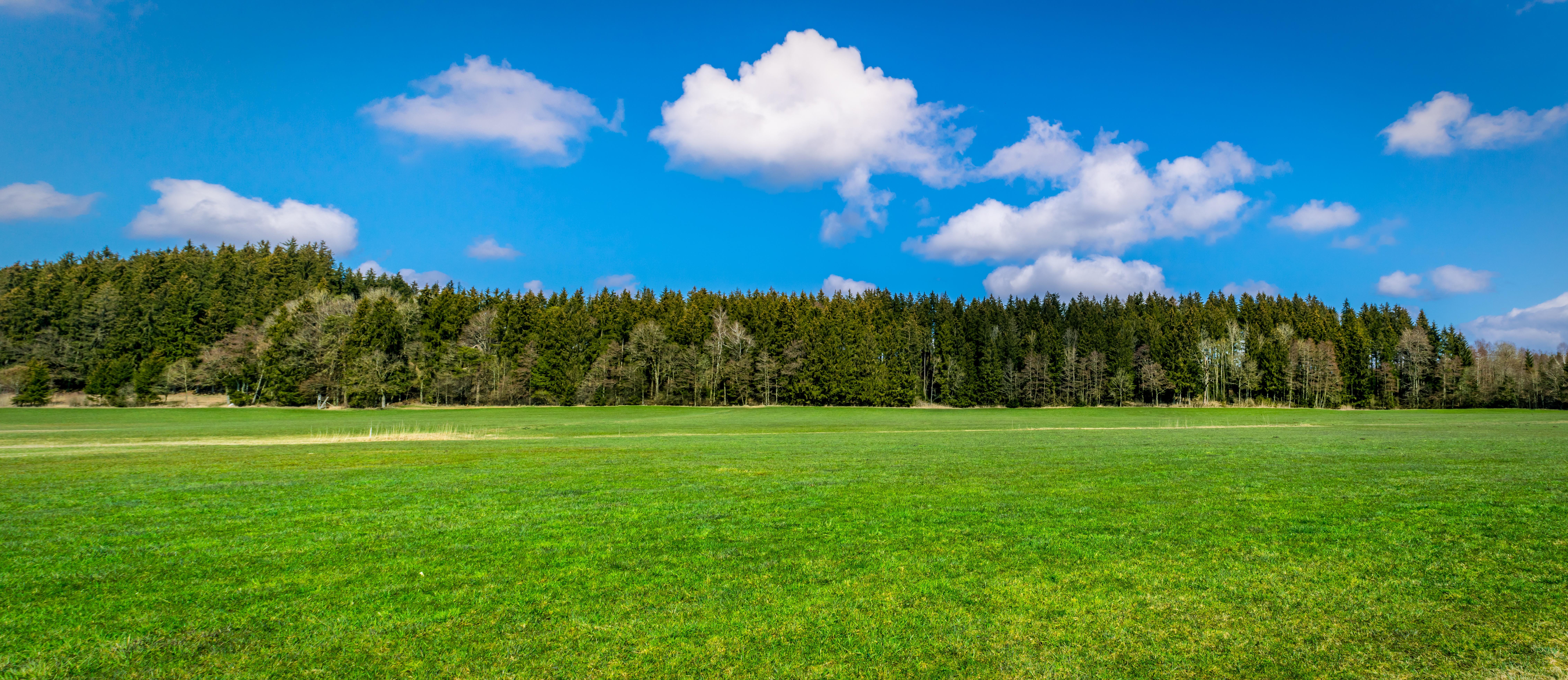 Free Images : tree, nature, grass, horizon, cloud ...