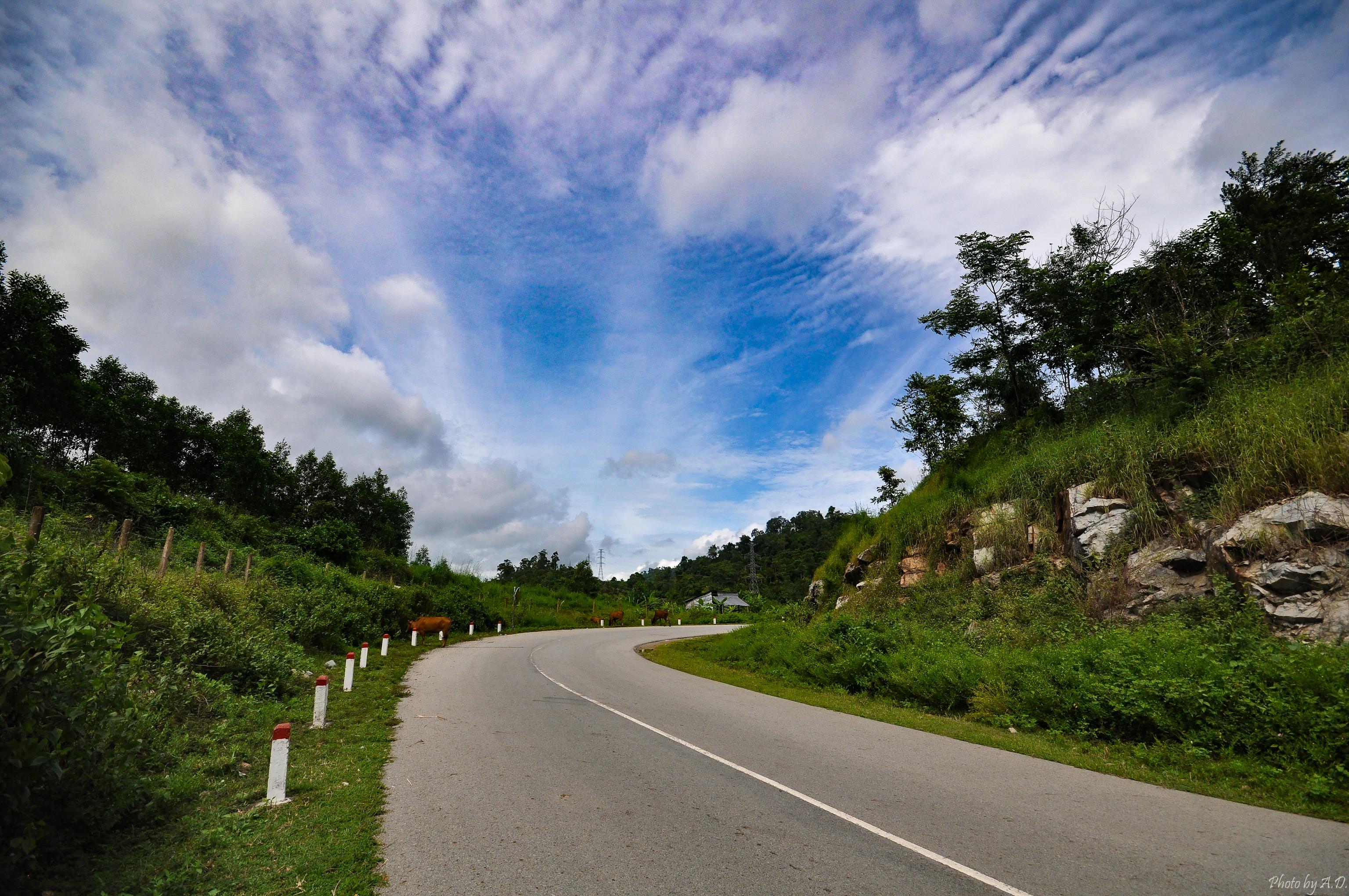 Download 104 Background Pemandangan Jalan Paling Keren