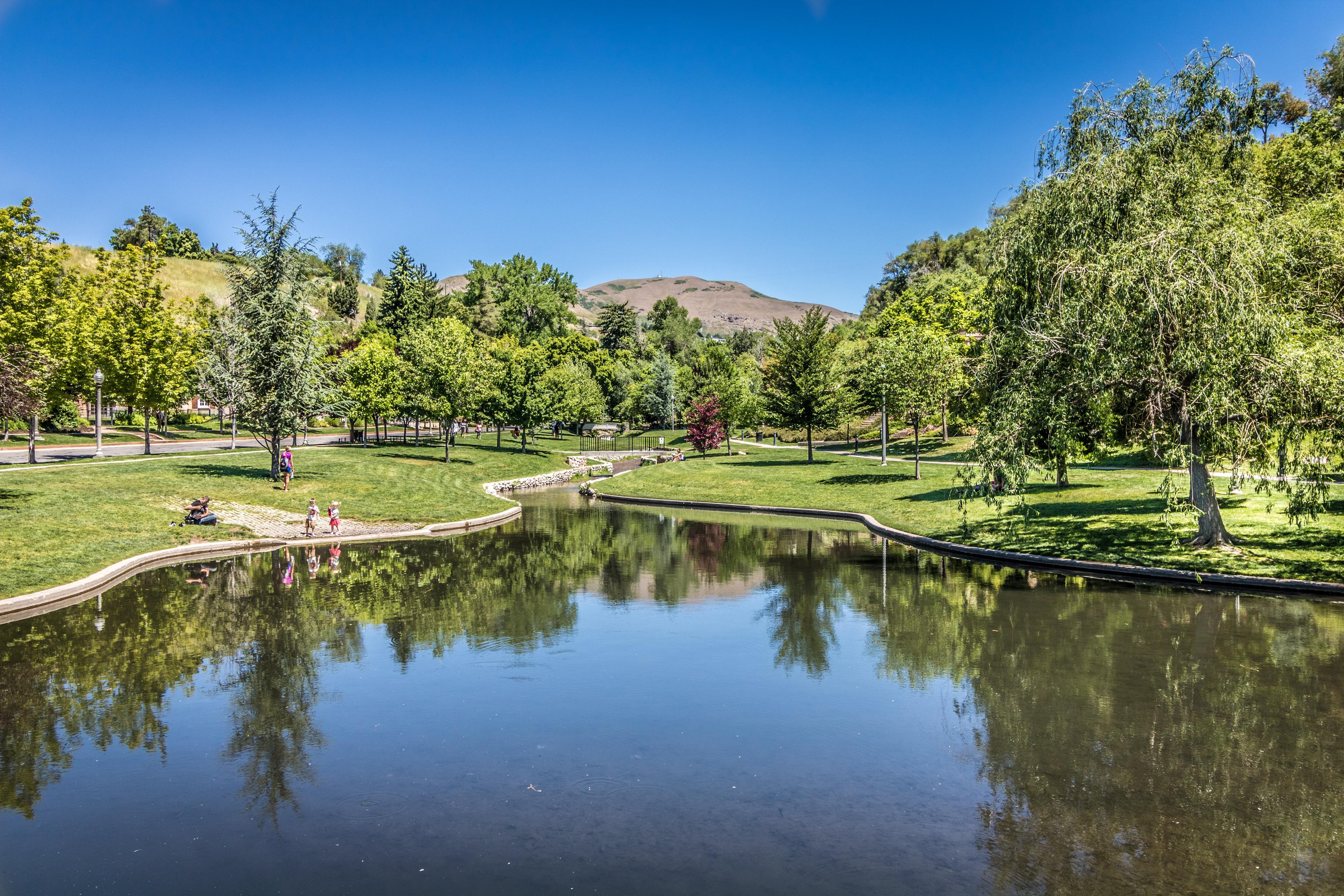 Salt Lake (Taman): description and photo