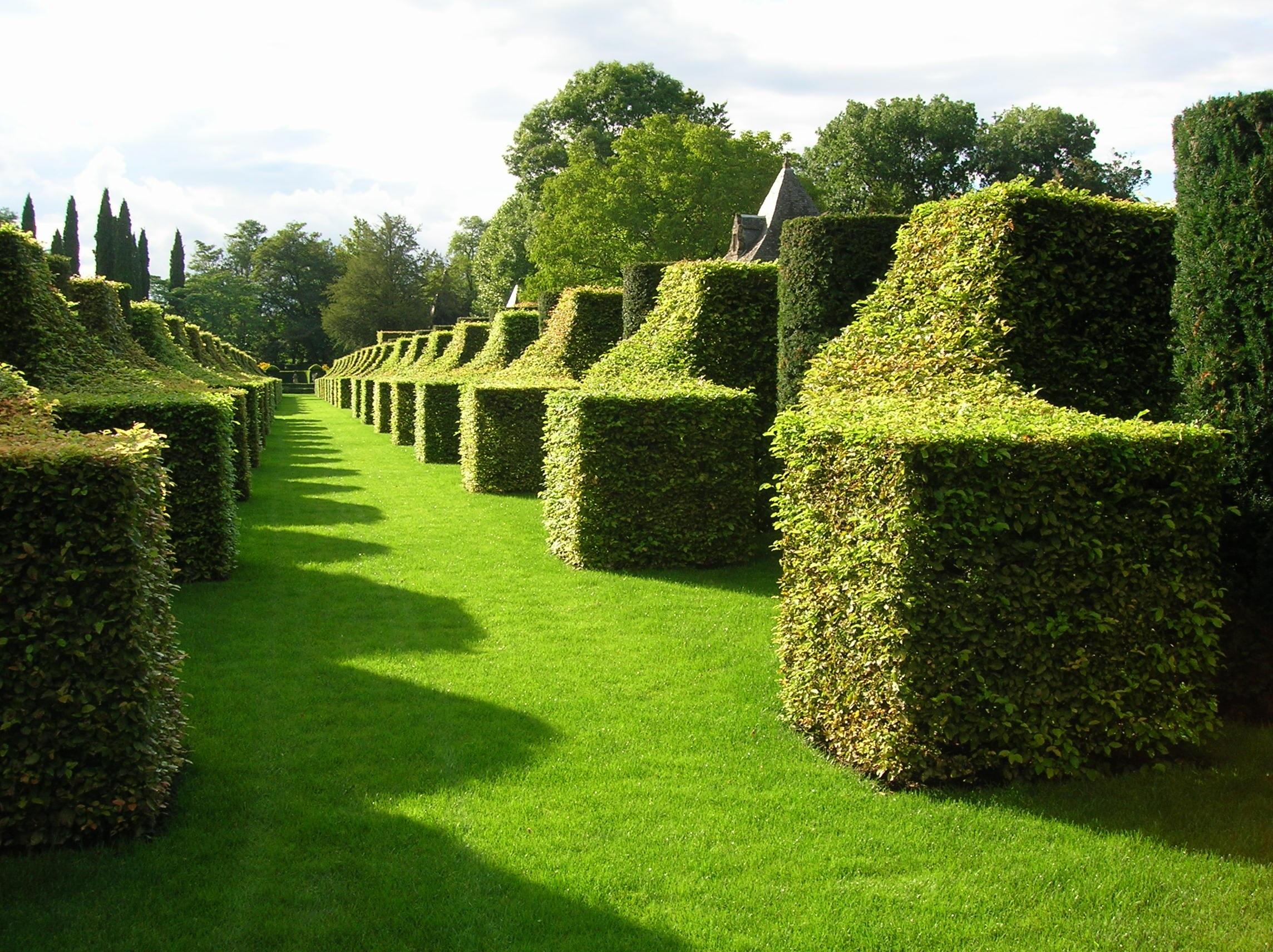 gratis afbeeldingen landschap boom natuur gras. Black Bedroom Furniture Sets. Home Design Ideas