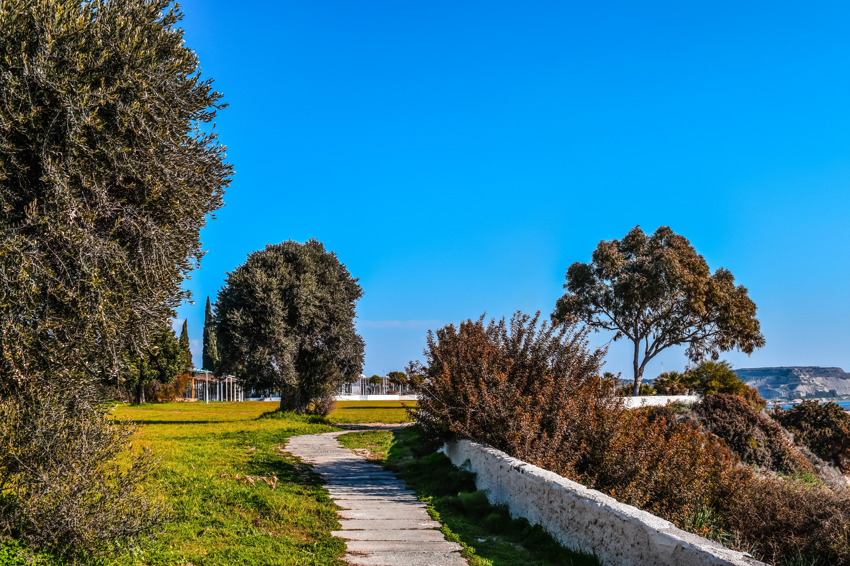 Immagini Belle Paesaggio Albero Natura Erba Cielo