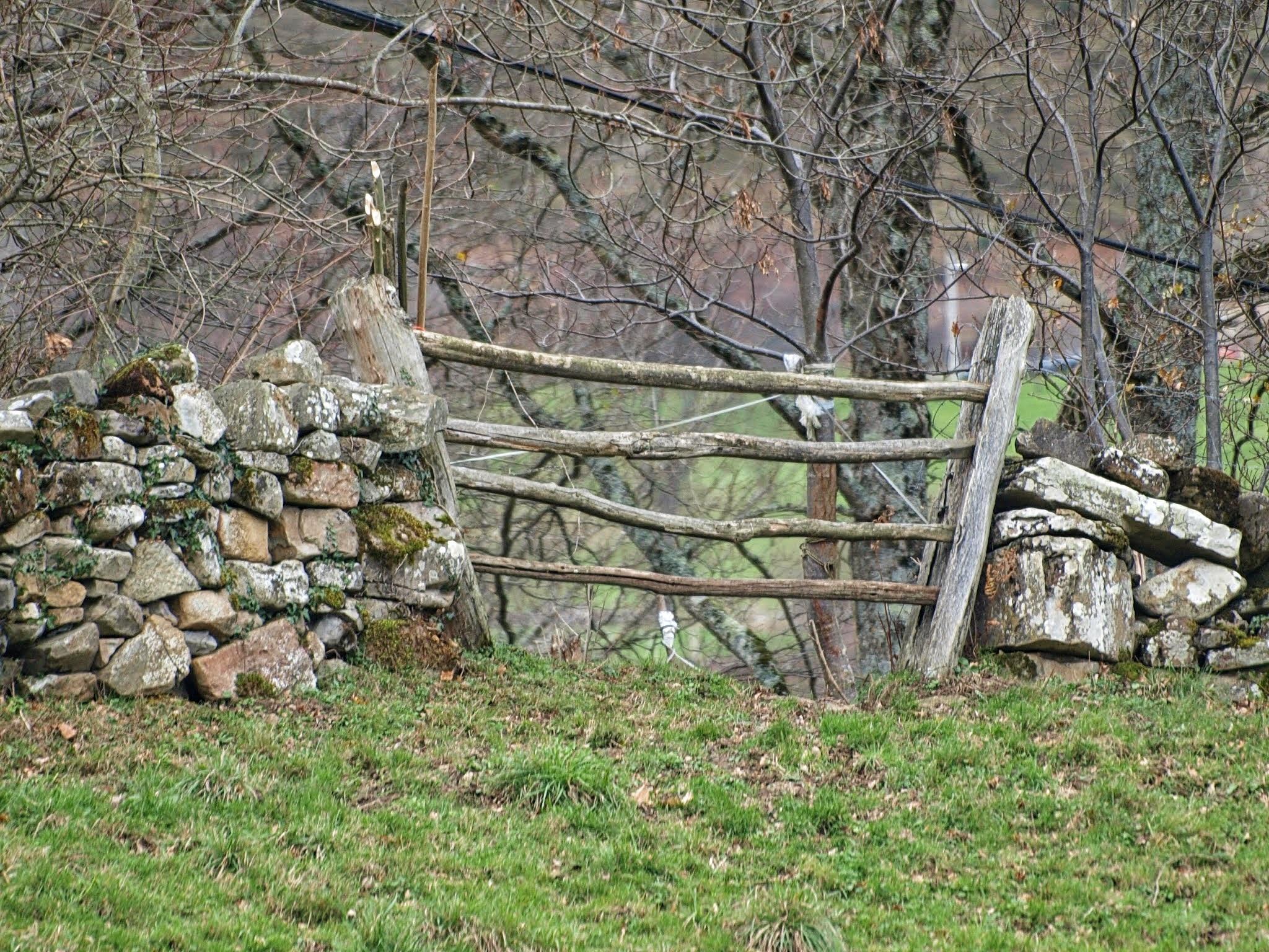 Kostenlose foto : Landschaft, Baum, Natur, Gras, Rock, Ast, Zaun ...