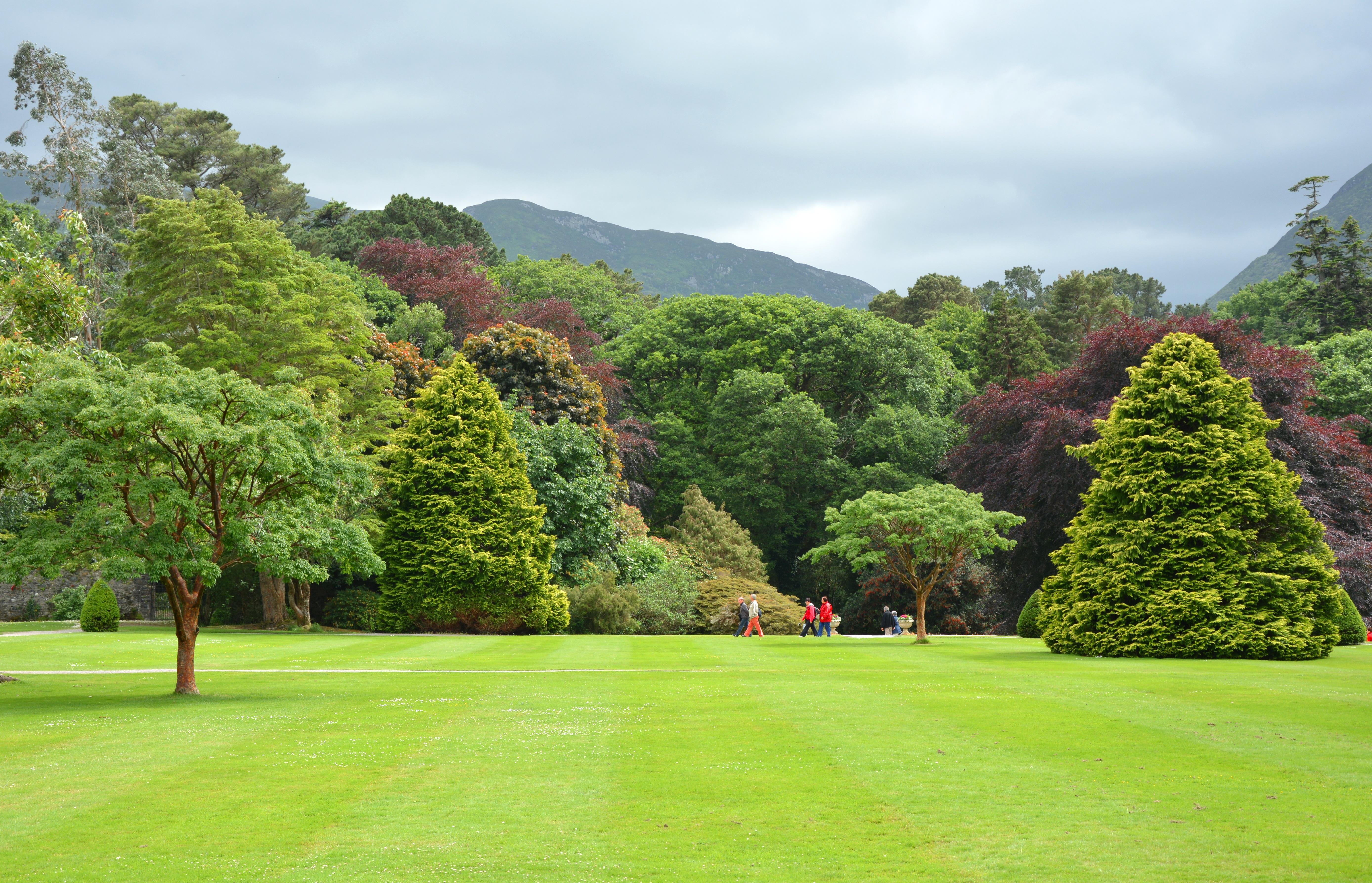 Images gratuites paysage arbre la nature herbe for Paysage jardin