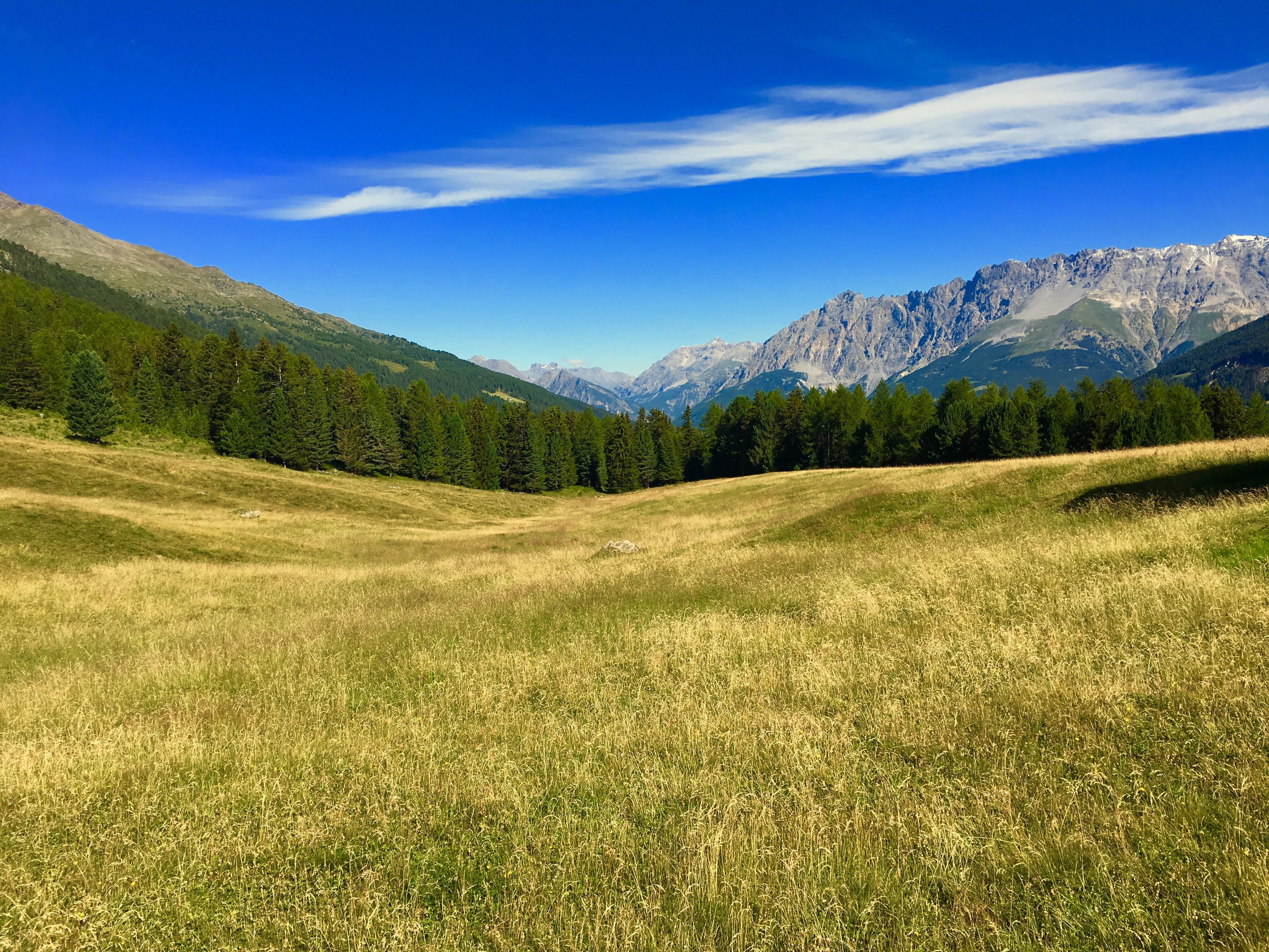 состав равнины и горы фотографии его словам