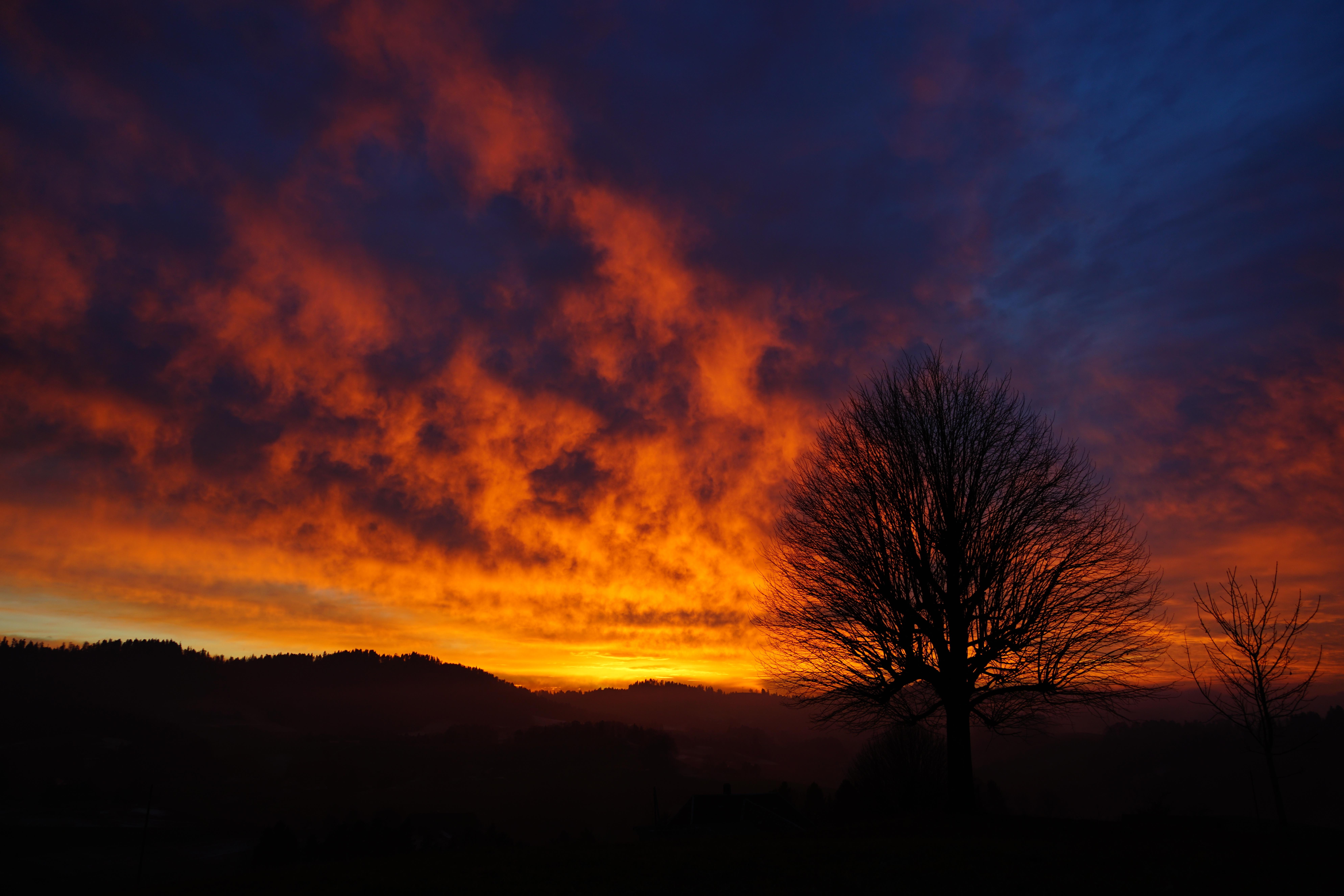 Wonderful Wallpaper Night Aesthetic - landscape-tree-nature-horizon-branch-light-glowing-cloud-sky-sun-sunrise-sunset-night-sunlight-morning-hill-dawn-atmosphere-isolated-dusk-daytime-evening-orange-red-cumulus-darkness-yellow-tribe-aesthetic-clouds-branches-switzerland-fiery-abendstimmung-clouded-sky-afterglow-evening-sky-back-light-phenomenon-individually-meteorological-phenomenon-single-trees-single-standing-solitary-tree-atmosphere-of-earth-computer-wallpaper-geological-phenomenon-red-sky-at-morning-ecoregion-cloud-glow-burstweid-wyssachen-1377126  Picture.jpg