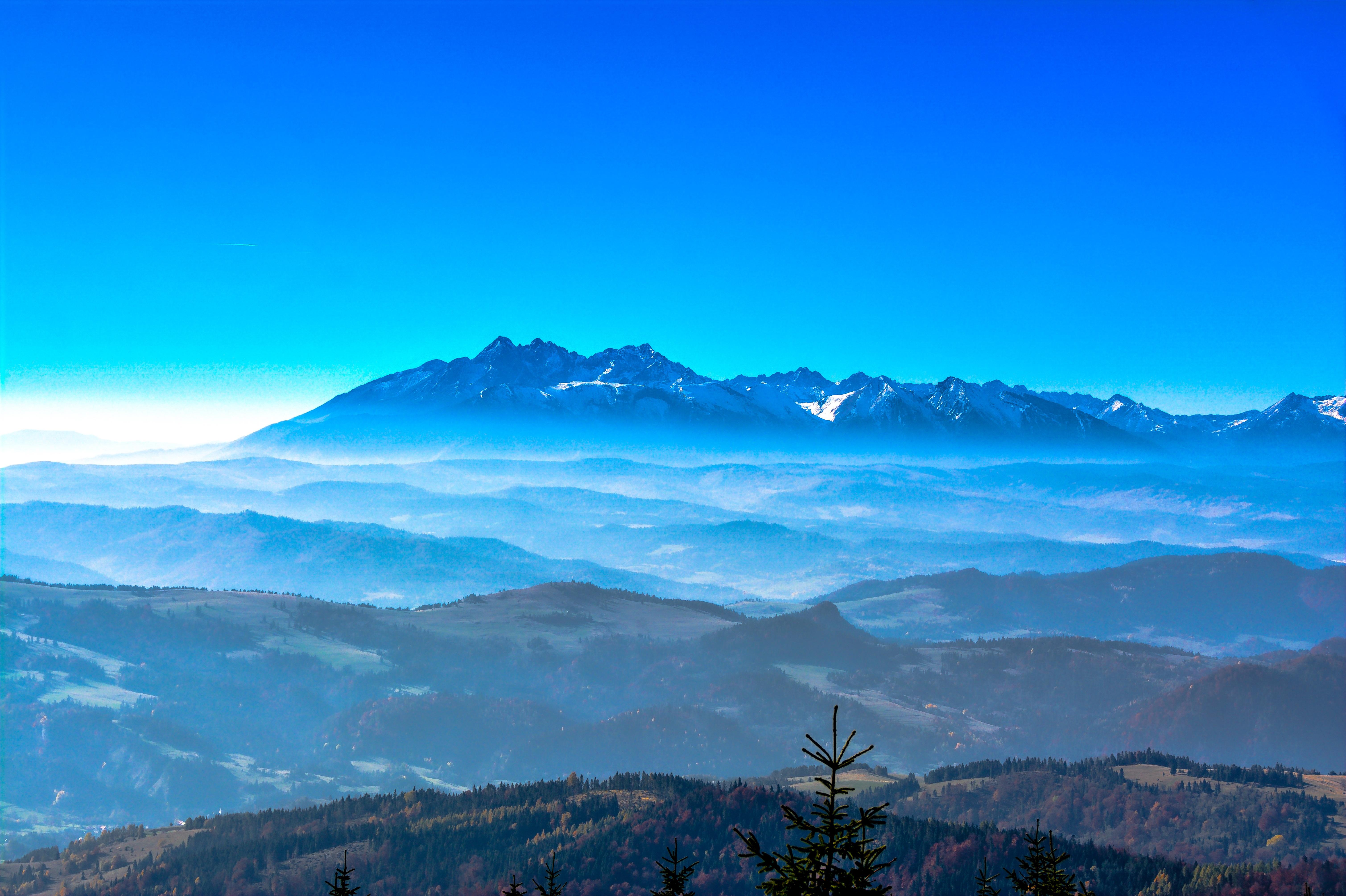 Gambar Pohon Horison Gunung Awan Langit Pagi Fajar