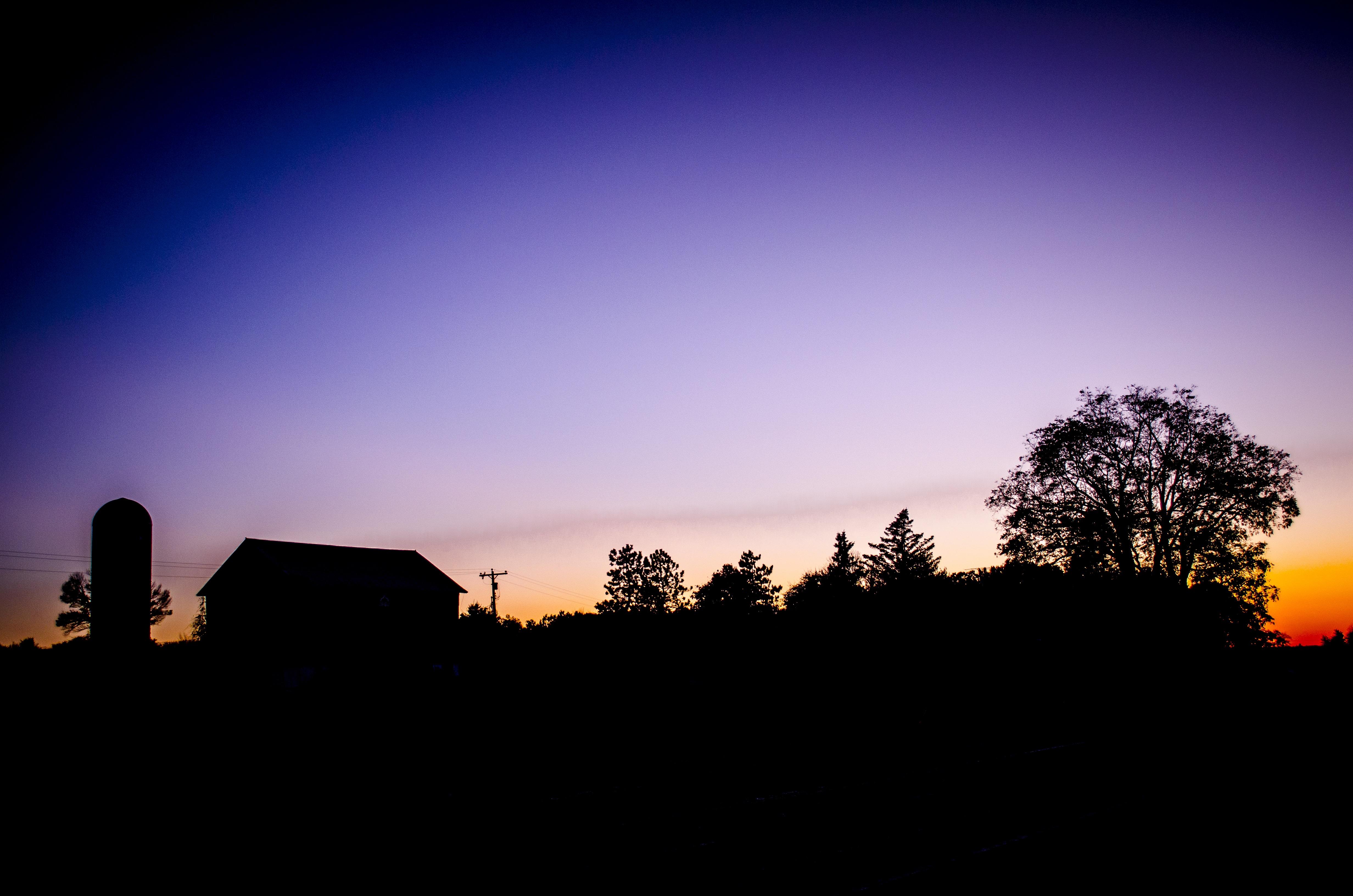 Gambar Pemandangan Pohon Alam Horison Bayangan Hitam Cahaya
