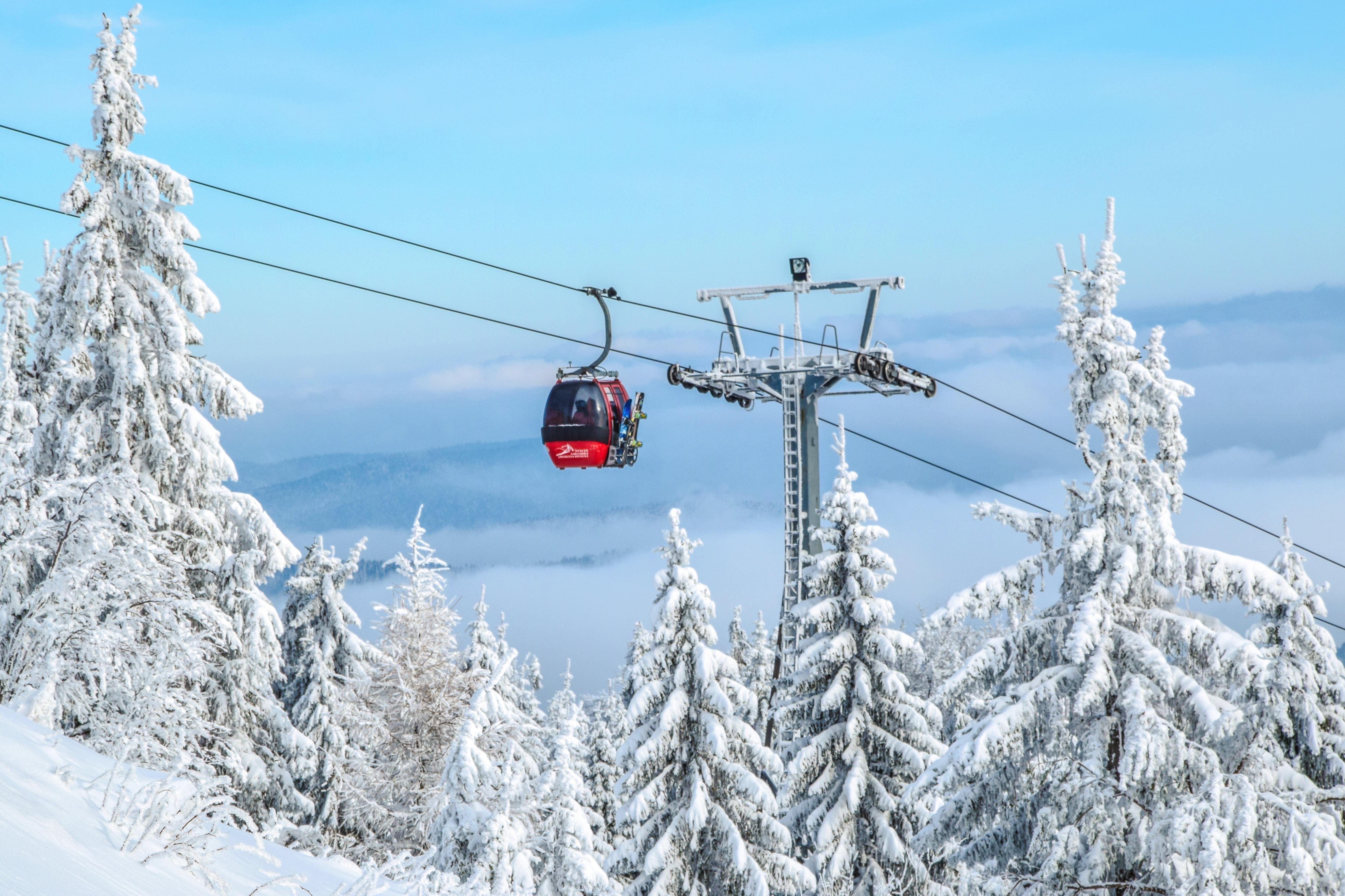 Gambar Pemandangan Pohon Alam Salju Musim Dingin Petualangan