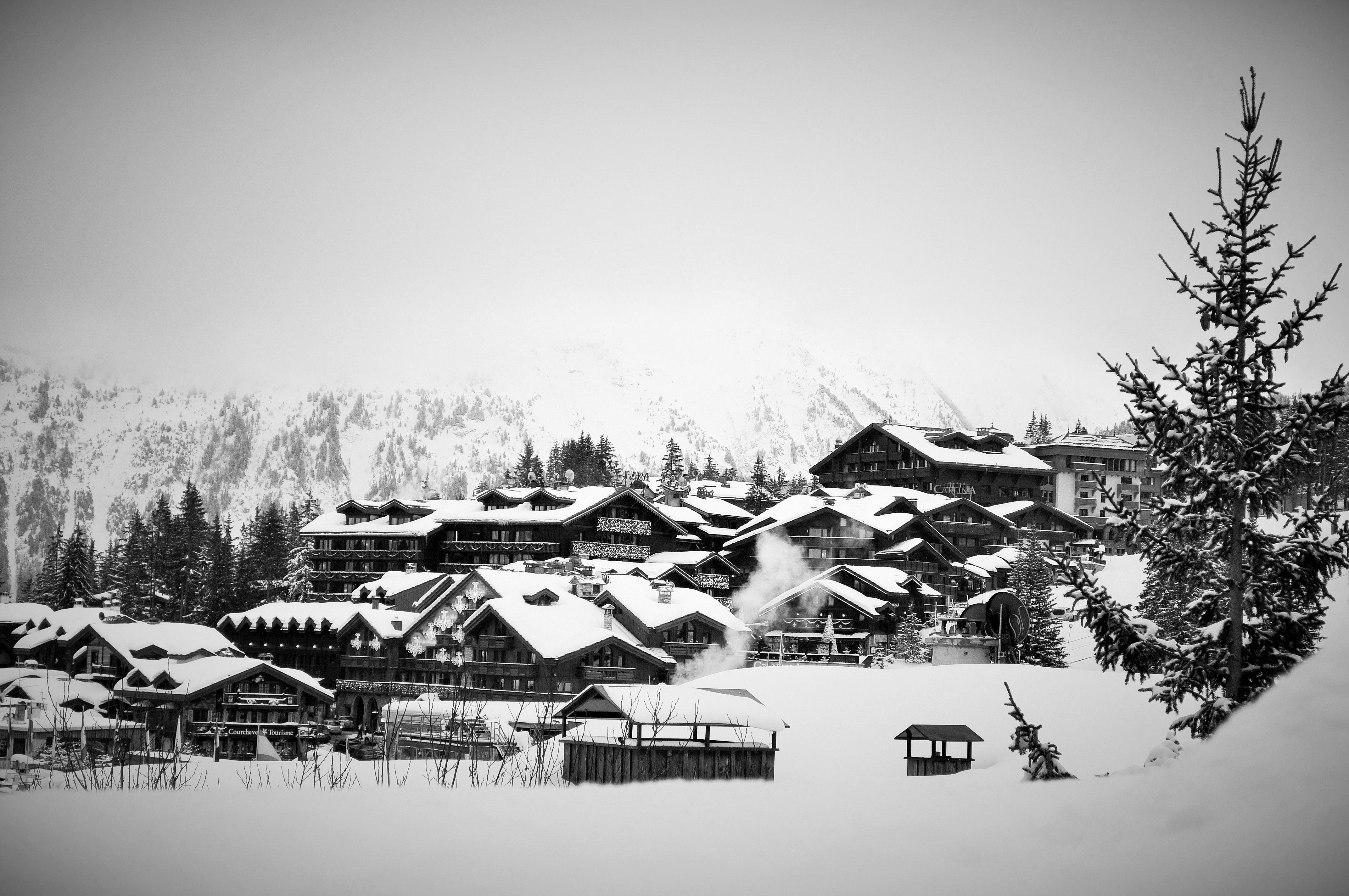 Gambar Alam Salju Musim Dingin Hitam Dan Putih