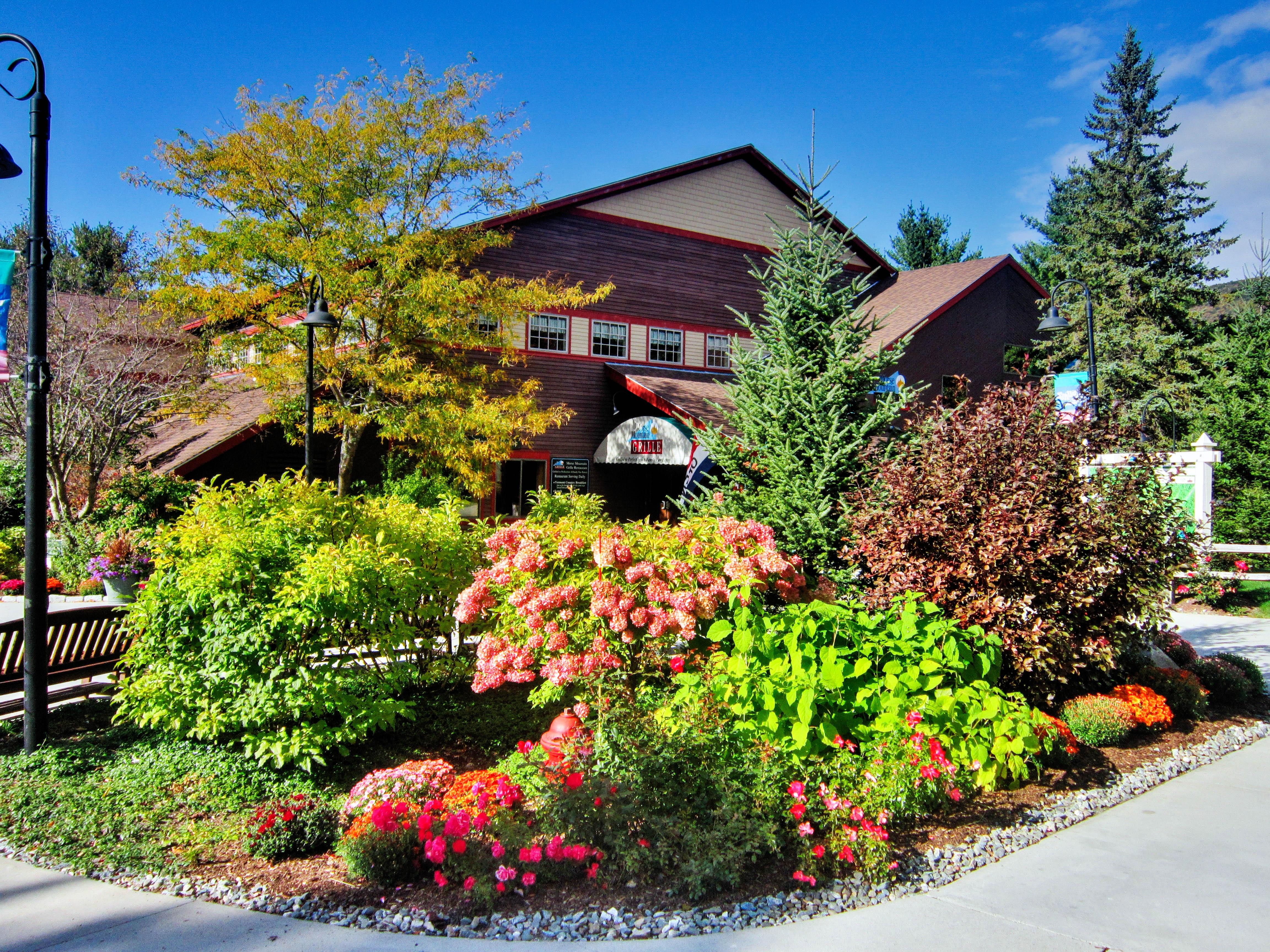 Kostenlose Foto : Landschaft, Baum, Natur, Draussen, Pflanze, Rasen, Haus,  Sonnenlicht, Fallen, Blume, Zuhause, Vorort, Laub, Ländlichen, Orange,  Grün, ...