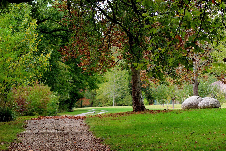 Fotos gratis paisaje rbol naturaleza camino c sped for Carson bosque y jardin