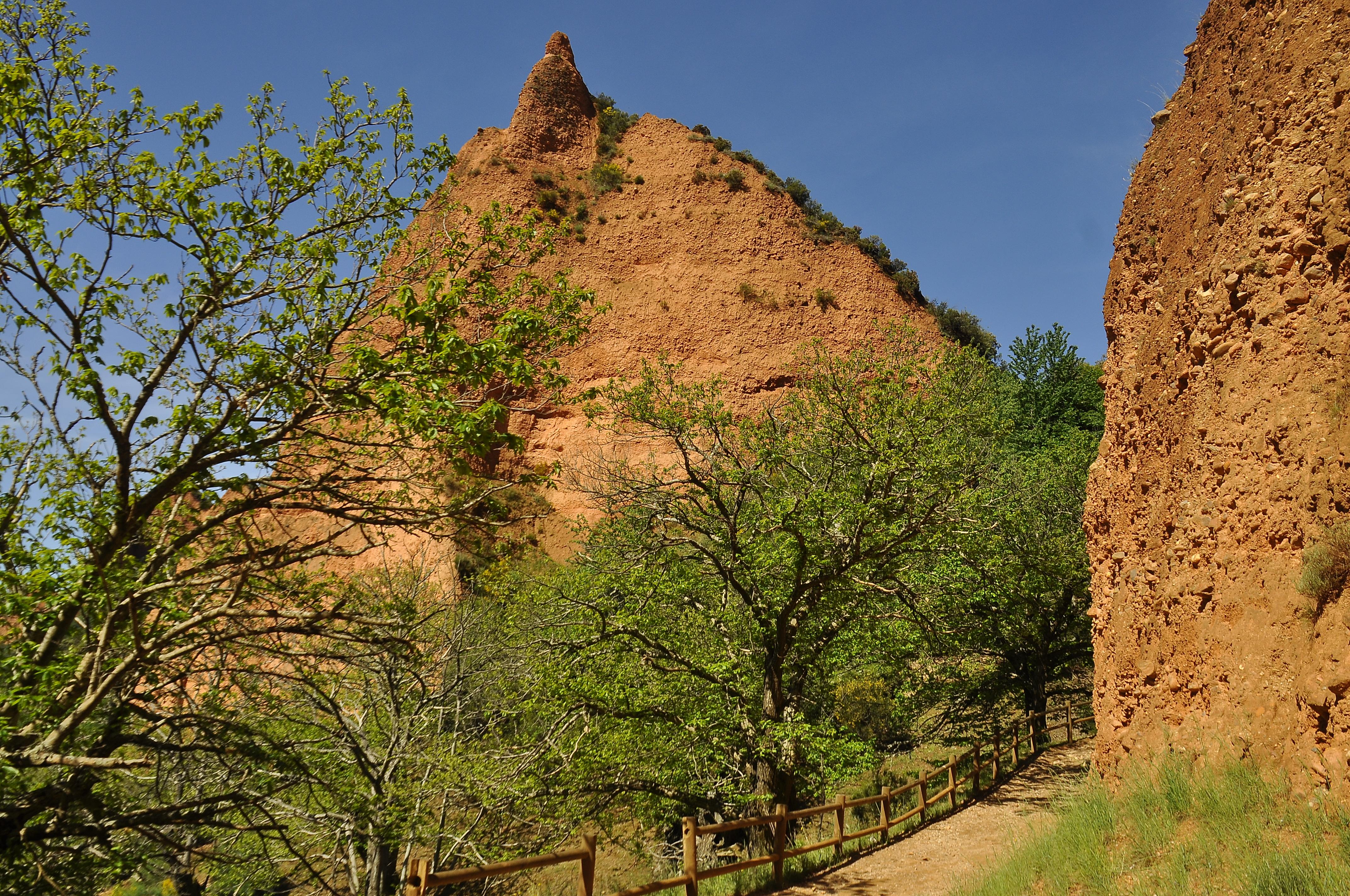 無料画像 : 風景, 木, 岩, トレ...
