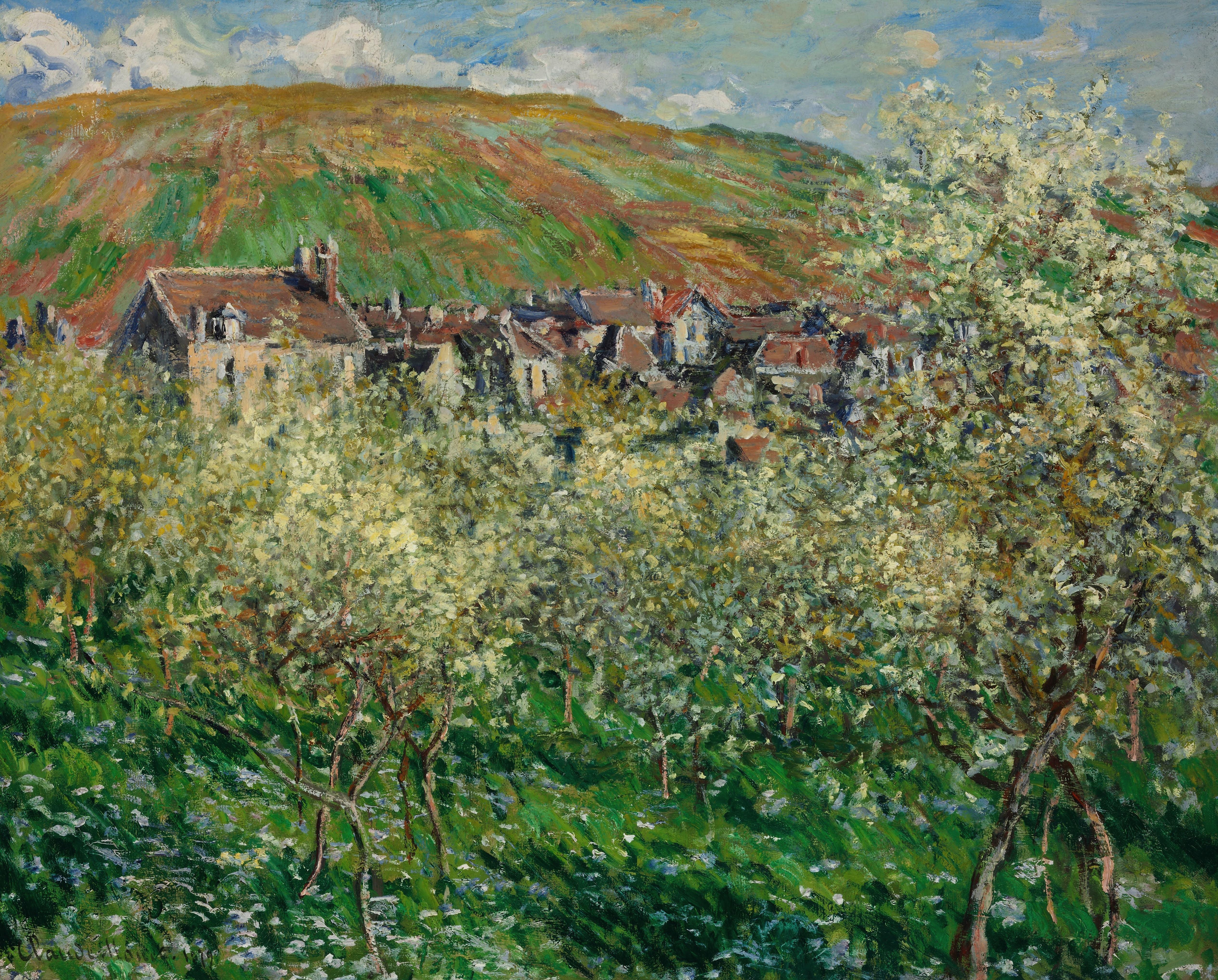 Free Images : landscape, tree, nature, sky, vineyard, meadow, flower ...