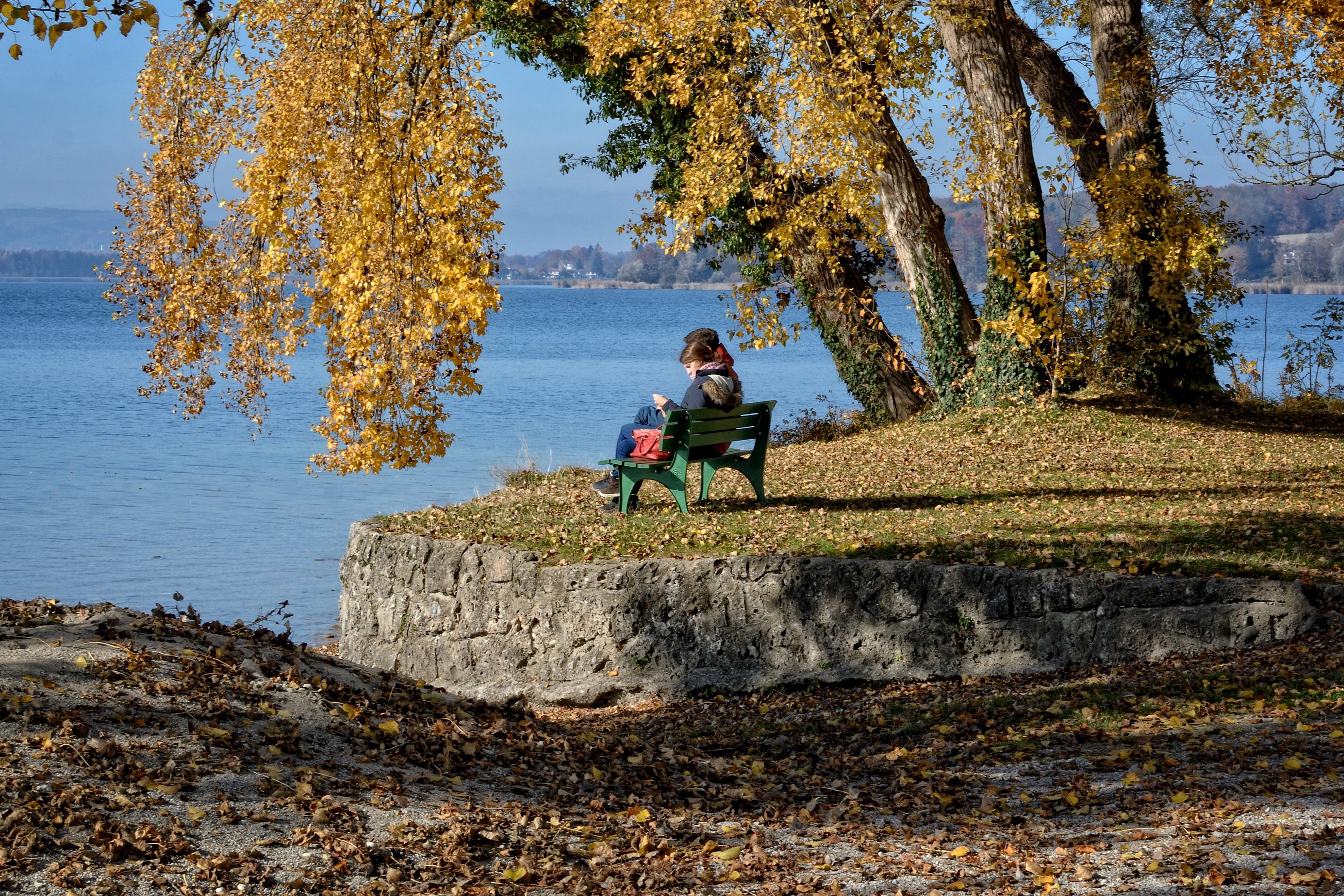 осень и человек фото
