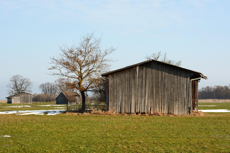 Kostenlose foto : Landschaft, Baum, Natur, Winter, Bauernhof, Wiese ...