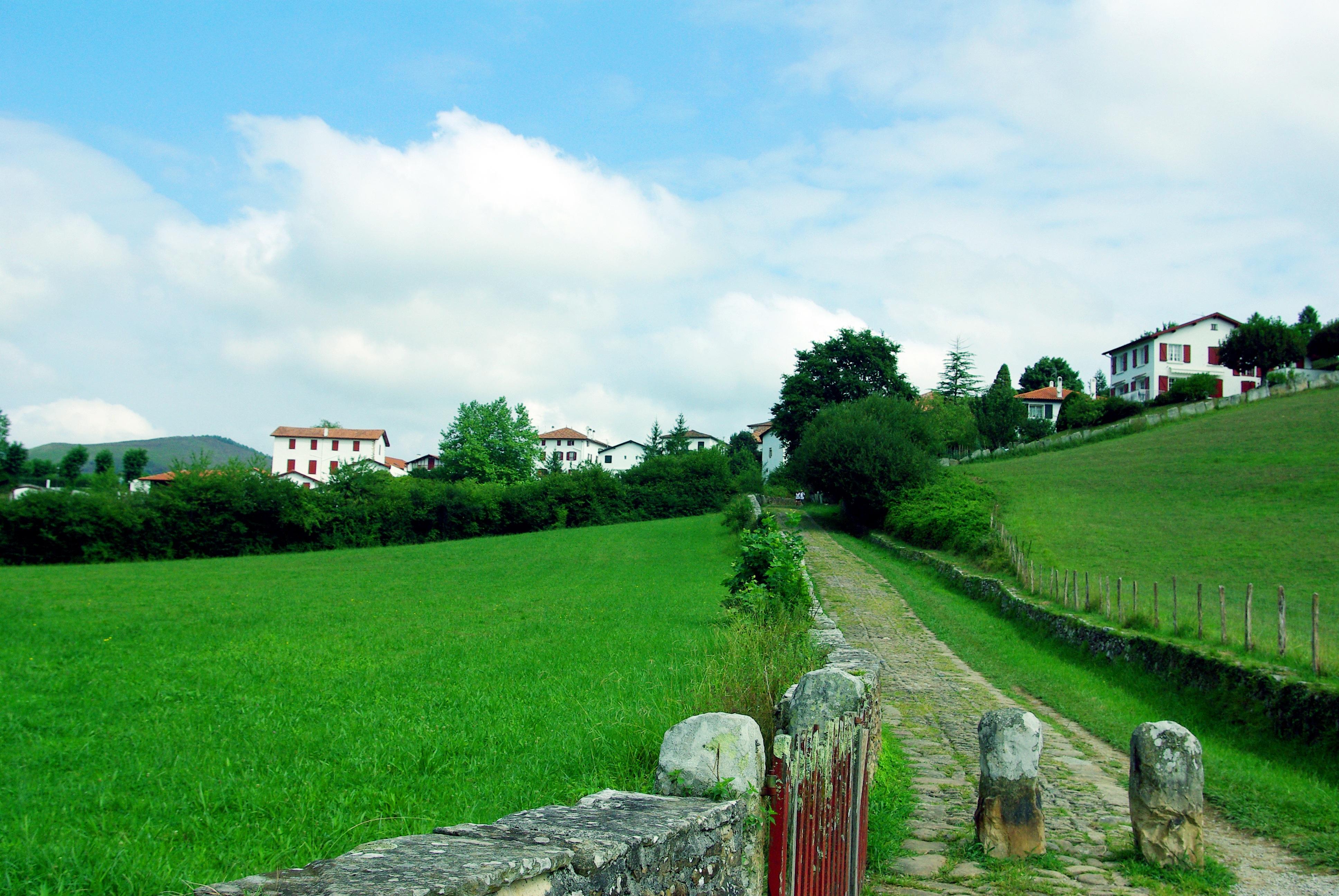 Fotos gratis paisaje rbol c sped granja prado - Arboles pais vasco ...