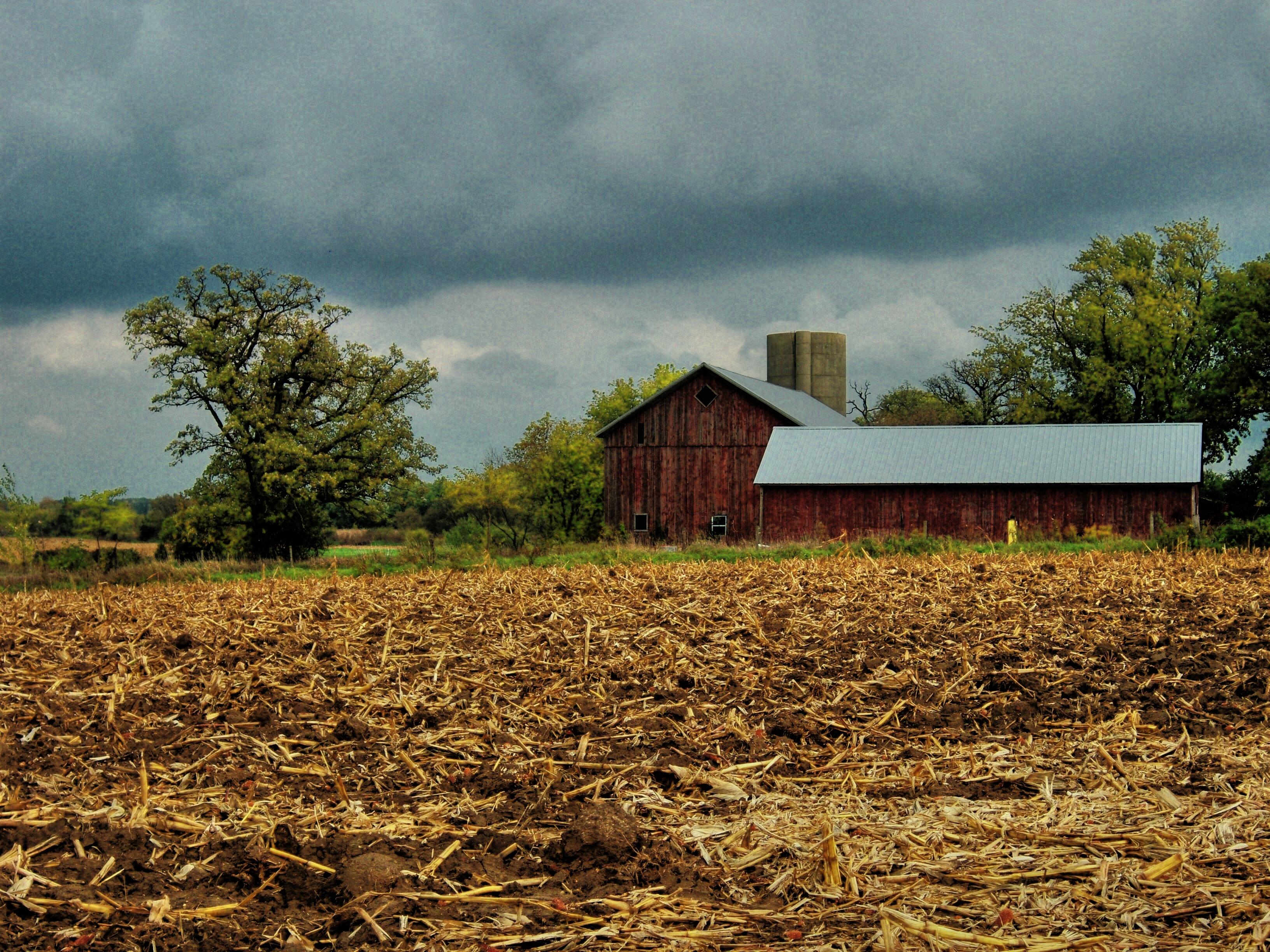 Free Images : landscape, tree, plant, field, farm, prairie ...