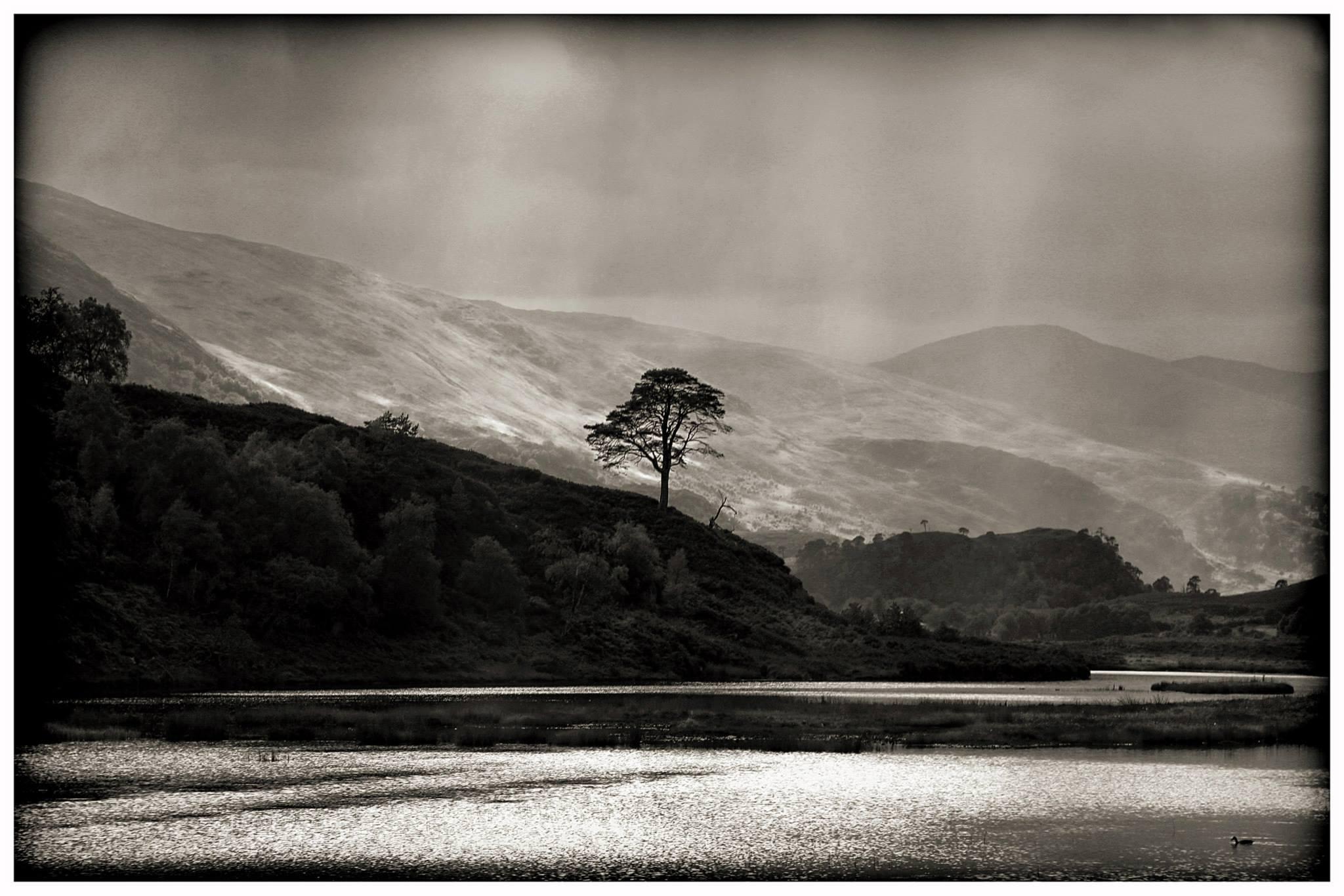 Fotos gratis paisaje rbol rock monta a nube en blanco y negro fotograf a lago - Blanco y negro paint ...